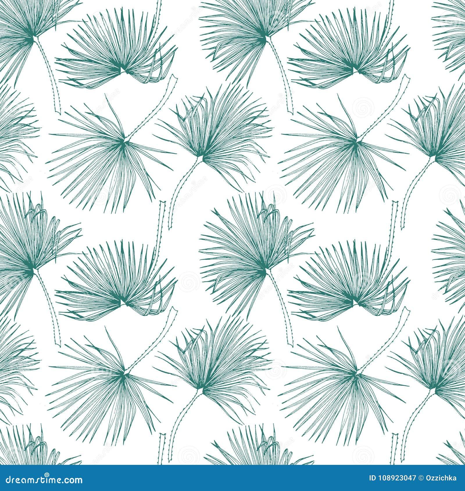 Folhas tropicais, teste padrão da selva Teste padrão sem emenda, detalhado, botânico Fundo do vetor Folhas de palmeira