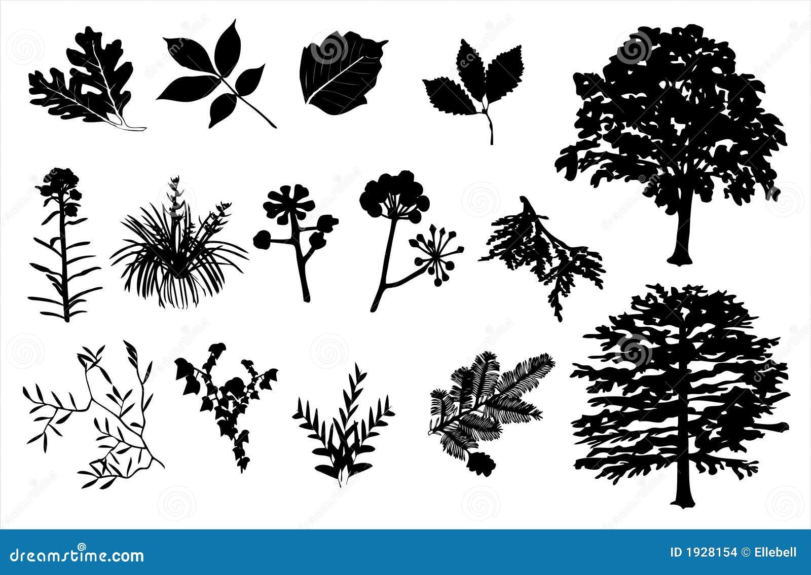 Foliage Silhouette Set Stock Vector Illustration Of