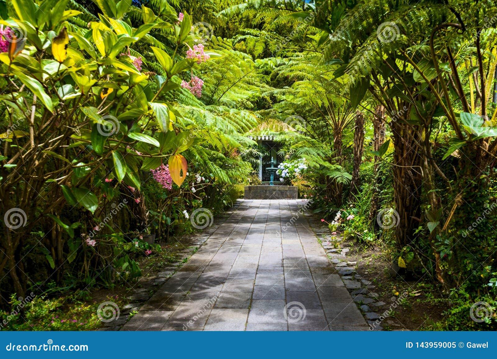 Folio de Maison del La del jardín botánico, Salazie, Reunion Island