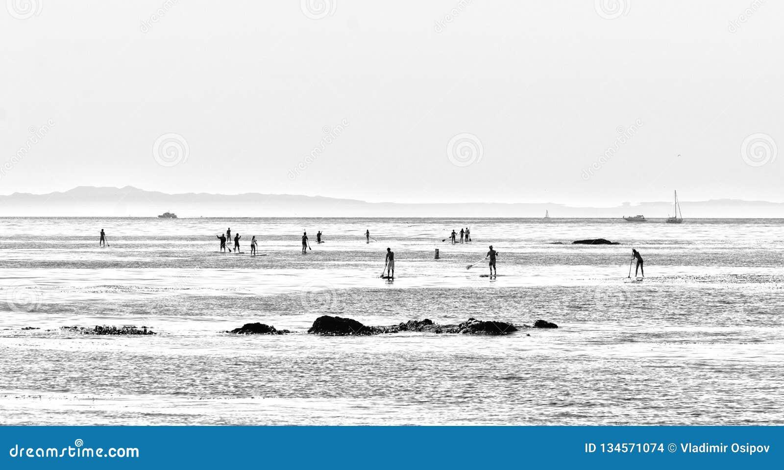 Folket surfar SUPbräden längs shorelinen av San Diego California USA Ett svartvitt foto i en minimalistic stil