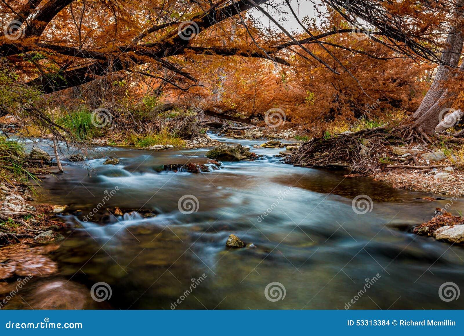 Follaje de otoño hermoso en Guadalupe River sedoso, Tejas