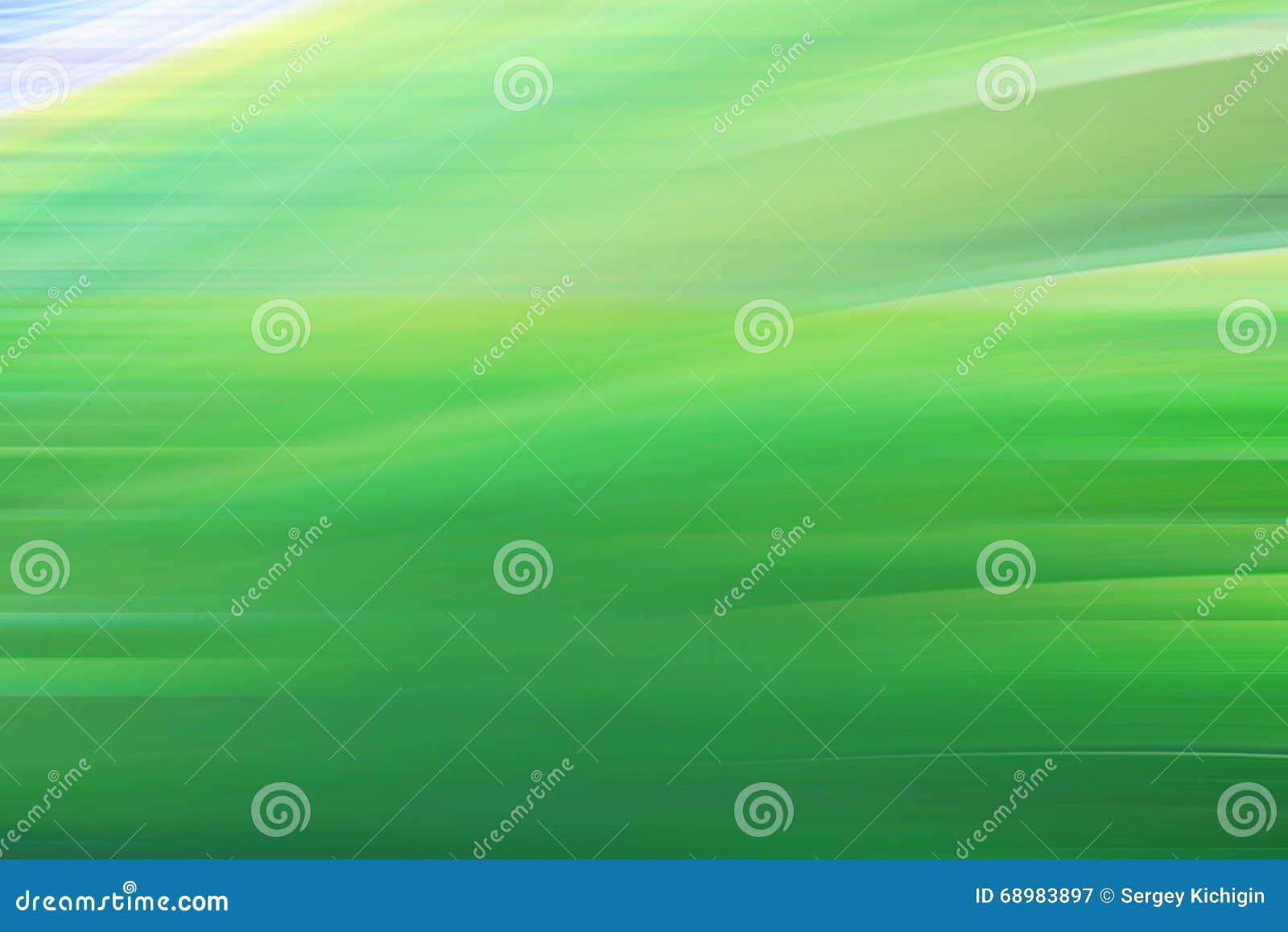 Follaje verde fresco de la primavera