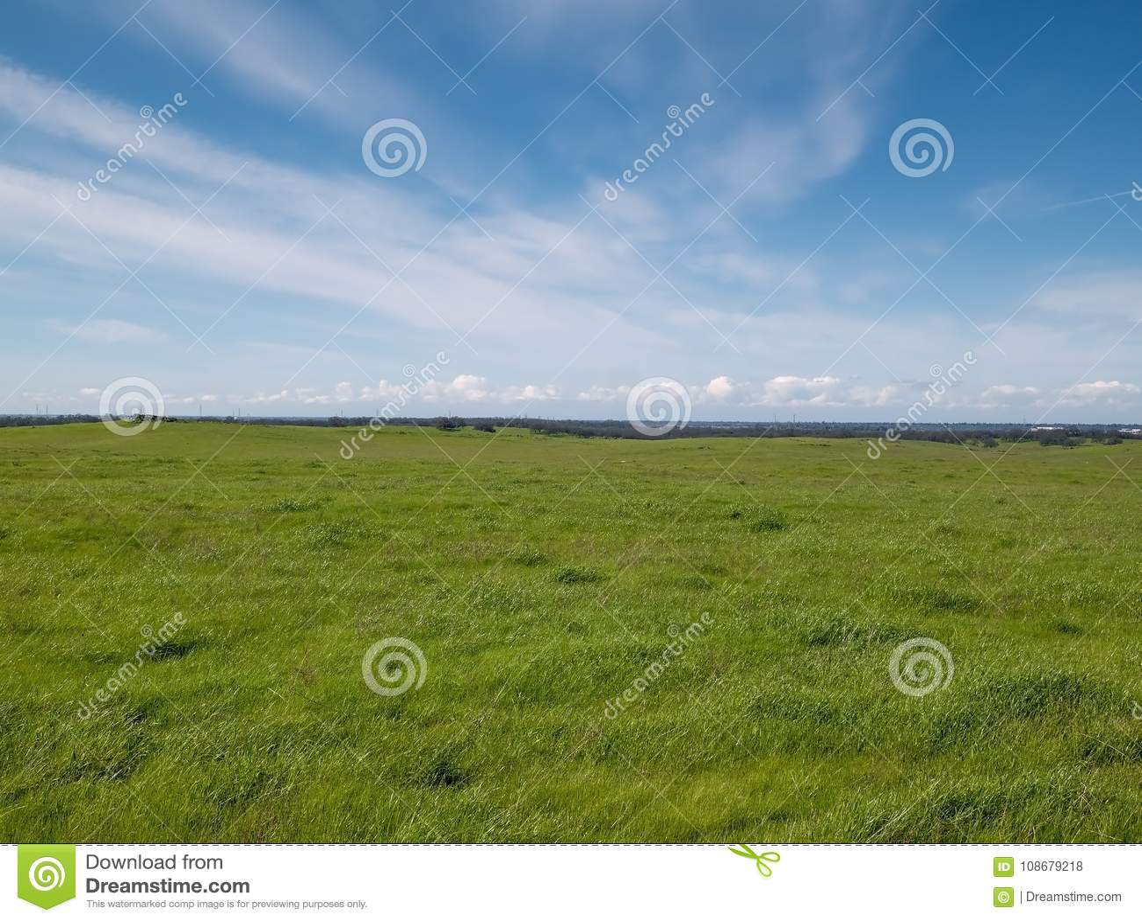 Folsom Ranch Winter Sky Blue
