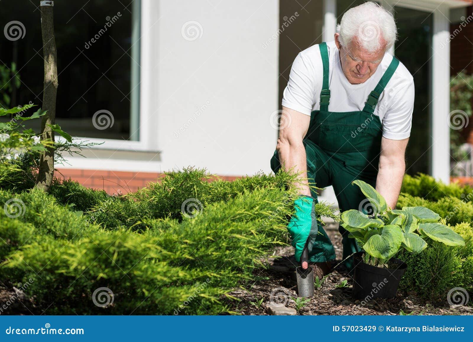 Fonctionnement supérieur de jardinier