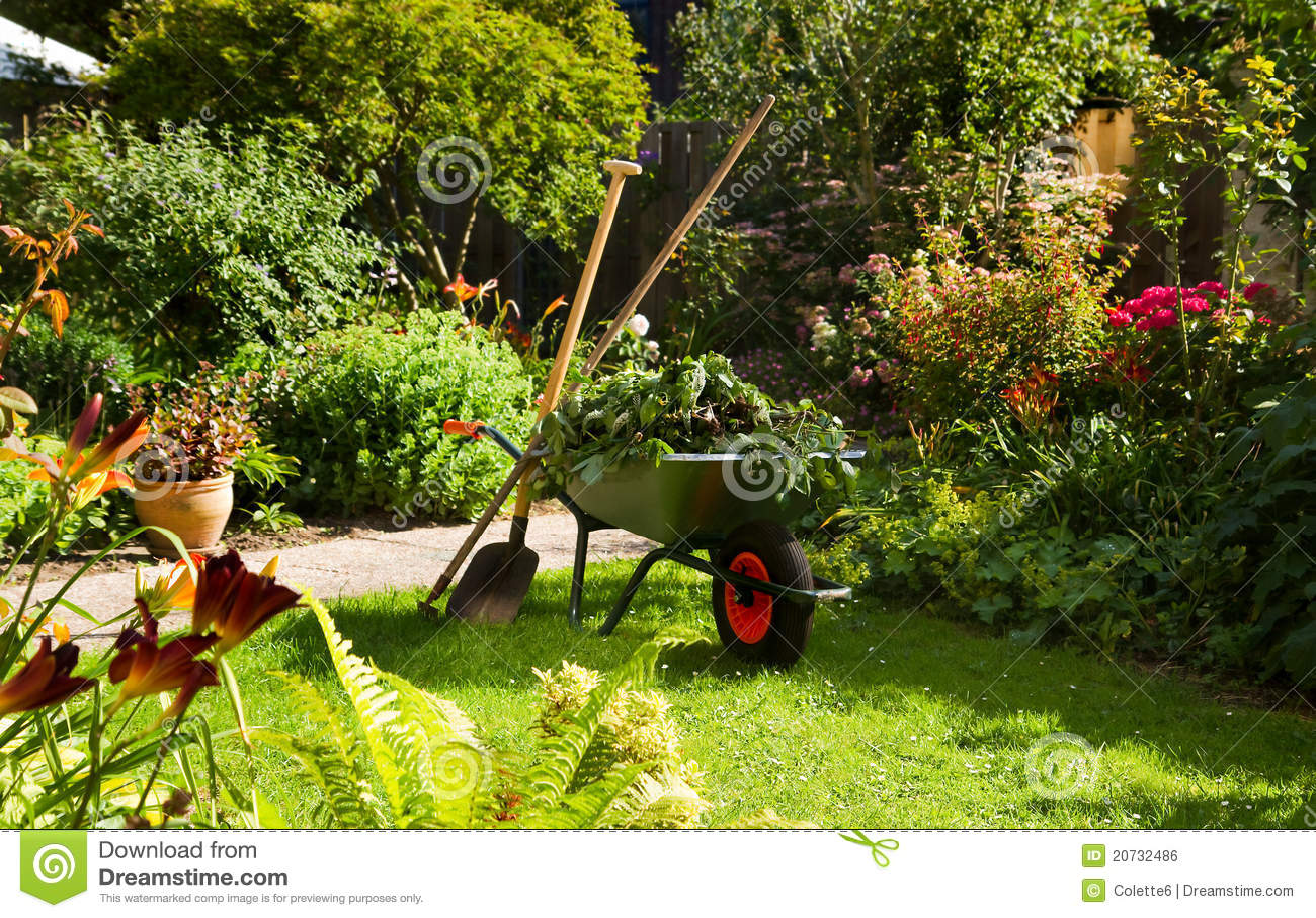 Fonctionner avec la brouette dans le jardin photo stock for Jardin dans le 78