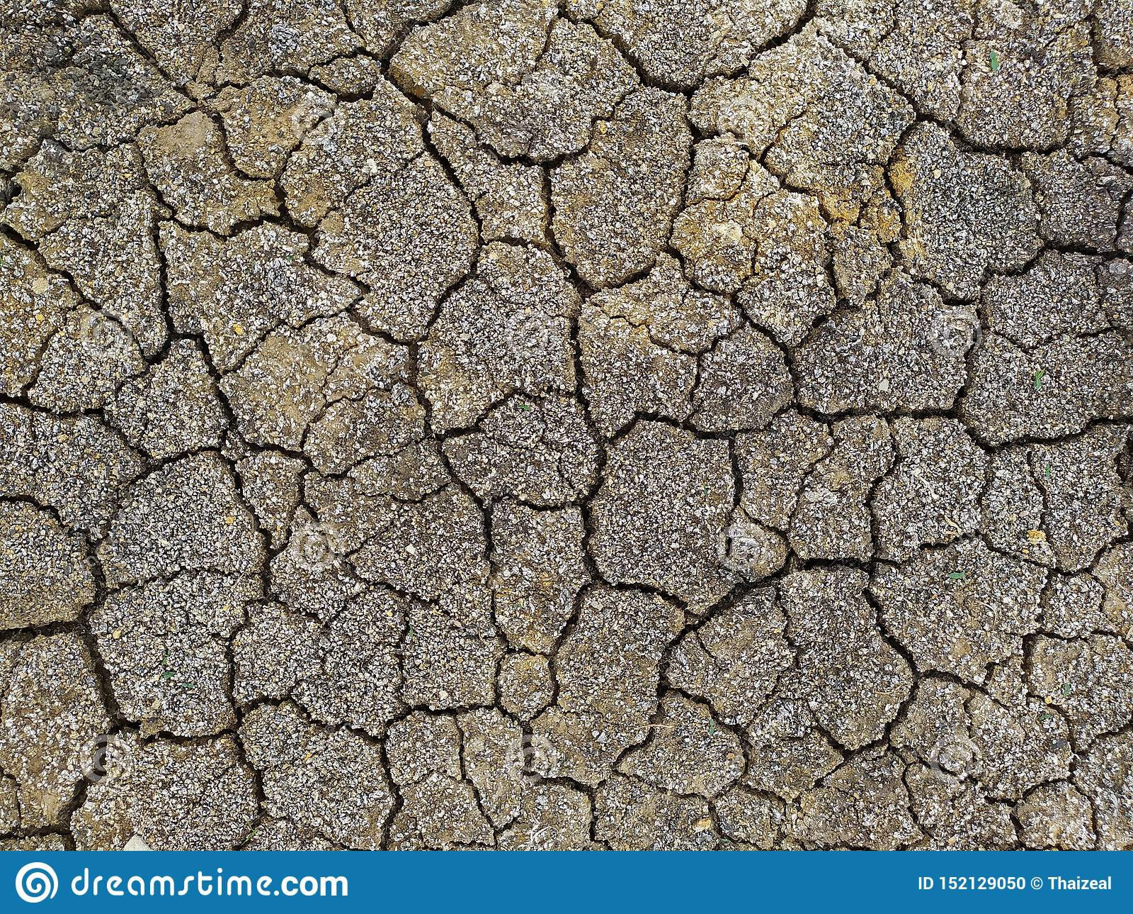 Fond au sol stérile