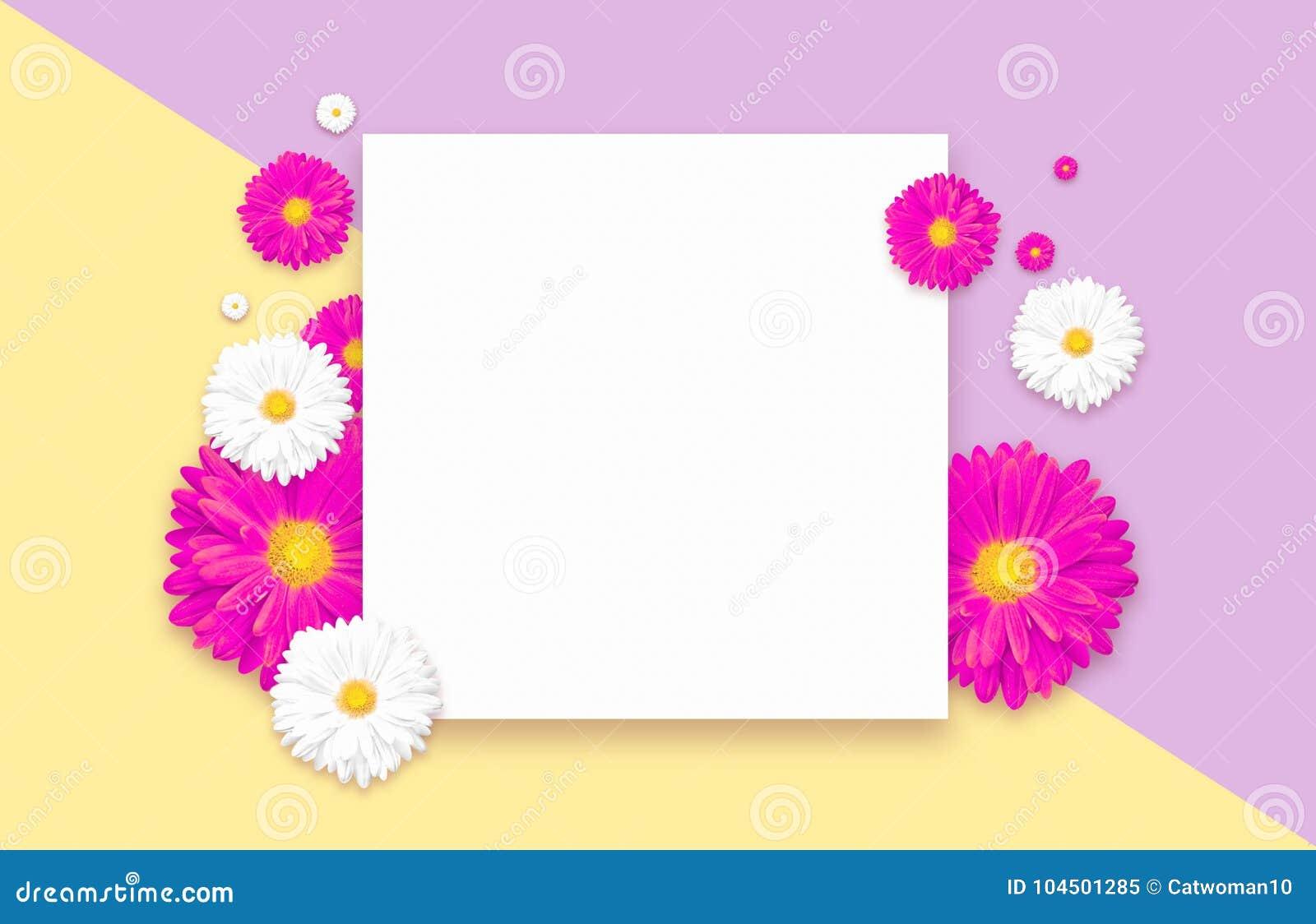 Fond avec la belle fleur colorée Wallpaper les insectes, invitation, affiches, brochure, remise de bon