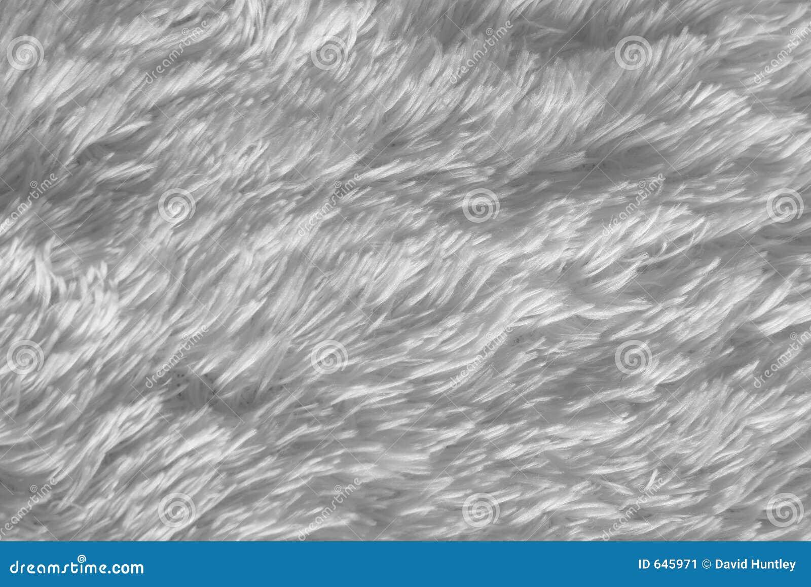 Tapis Long Poil Blanc fond blanc de tapis à longs poils image stock - image du