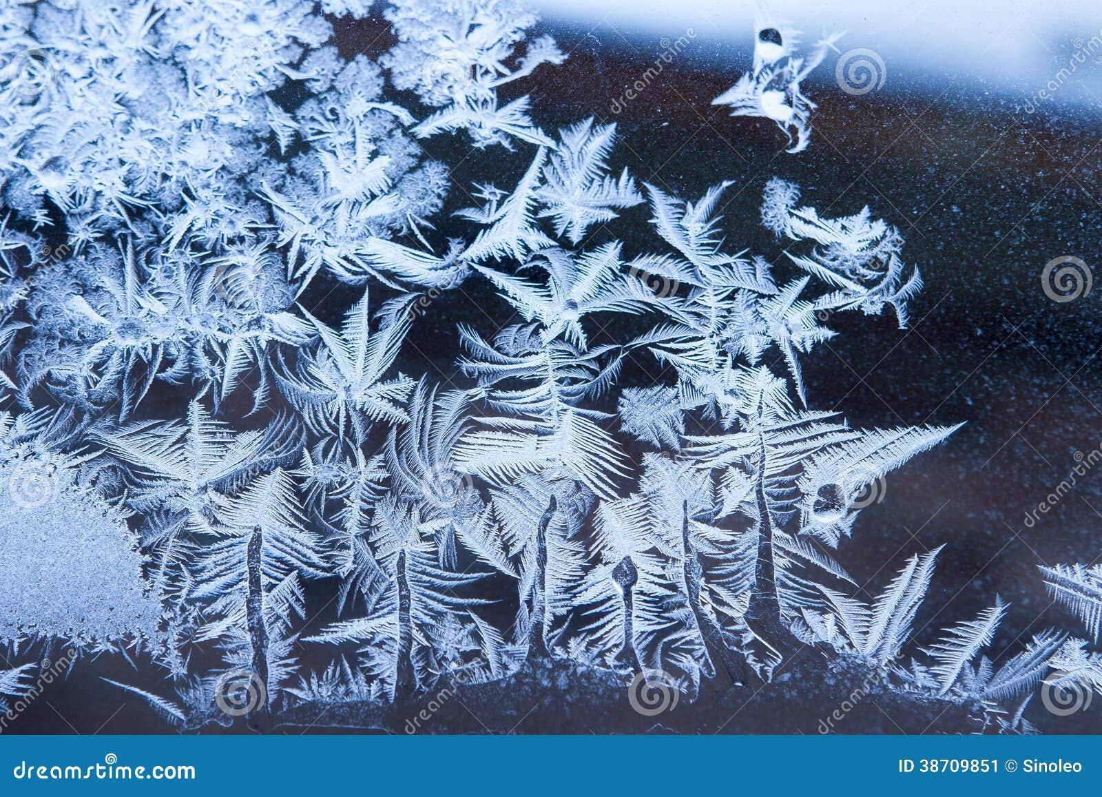 fond bleu de fleur de glace image stock - image: 38709851
