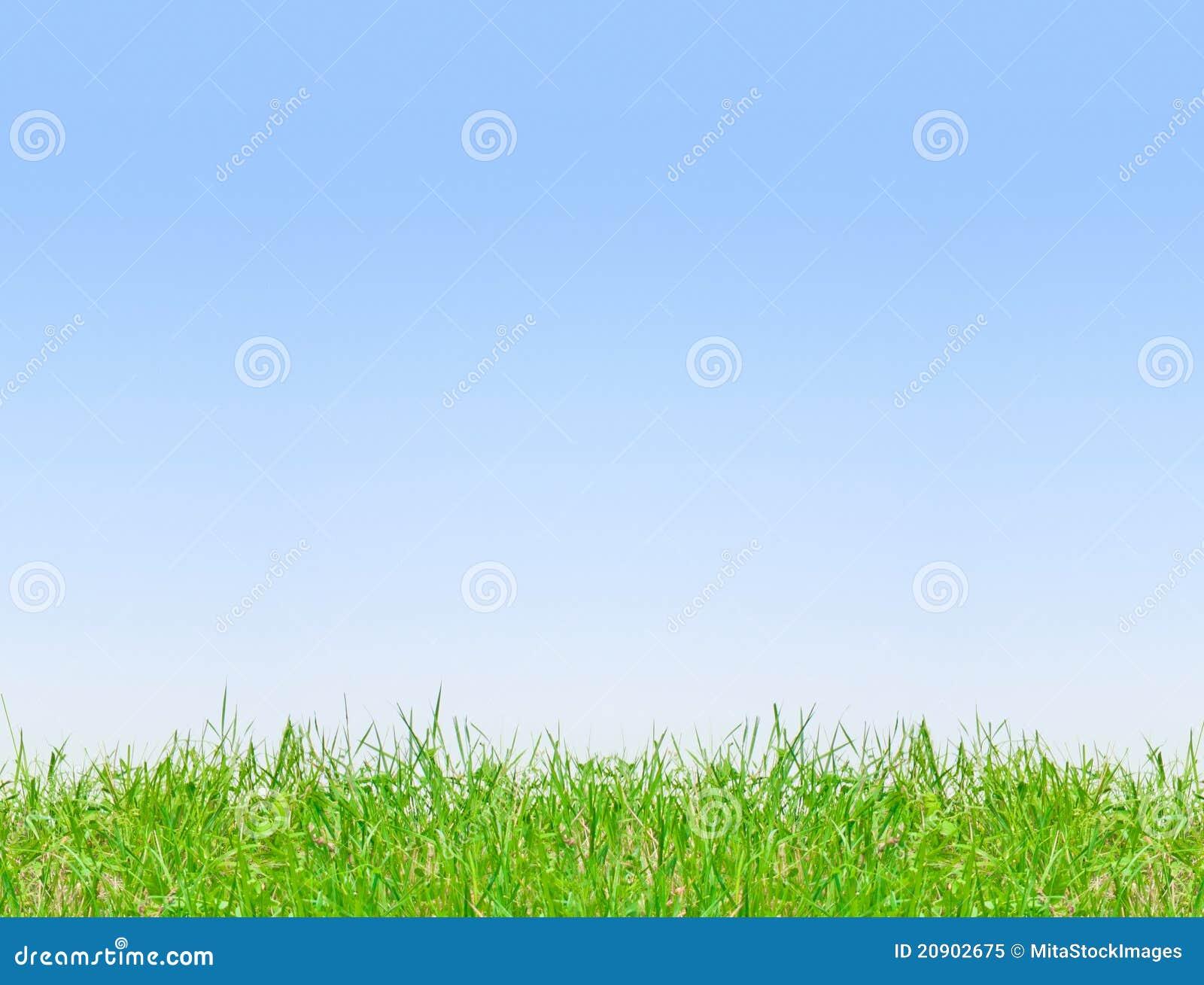 Fond clair de ciel bleu photo libre de droits image 20902675 - Image ciel bleu clair ...