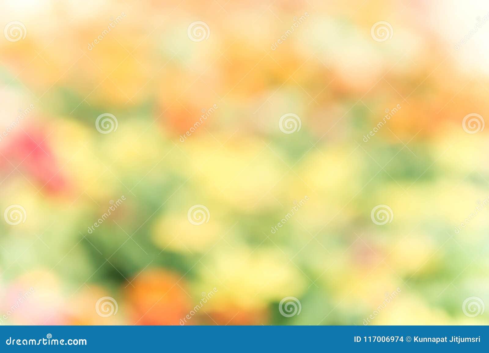 Fond coloré abstrait de tache floue de nature de mélange