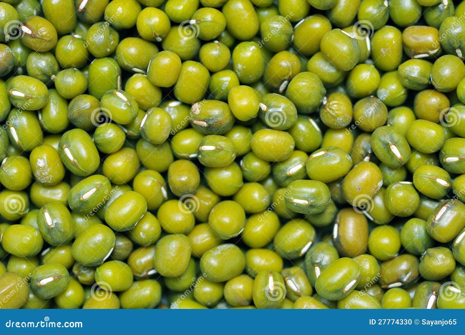 Fond d haricot vert ou de fèves de mung.