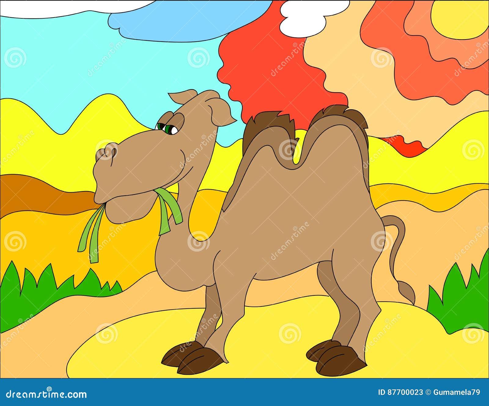 Fond d illustration colorée d un chameau