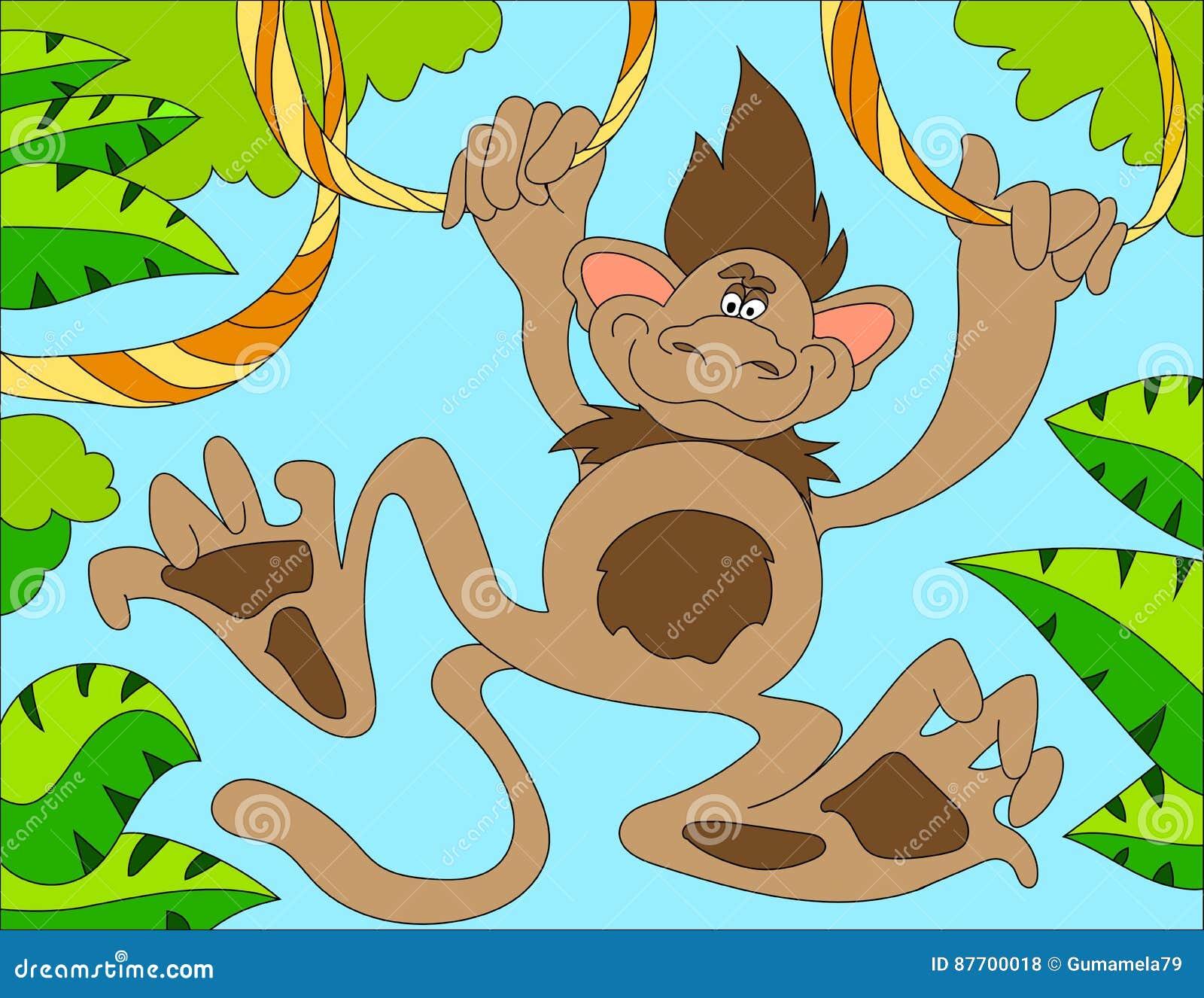 Fond d illustration colorée d un singe