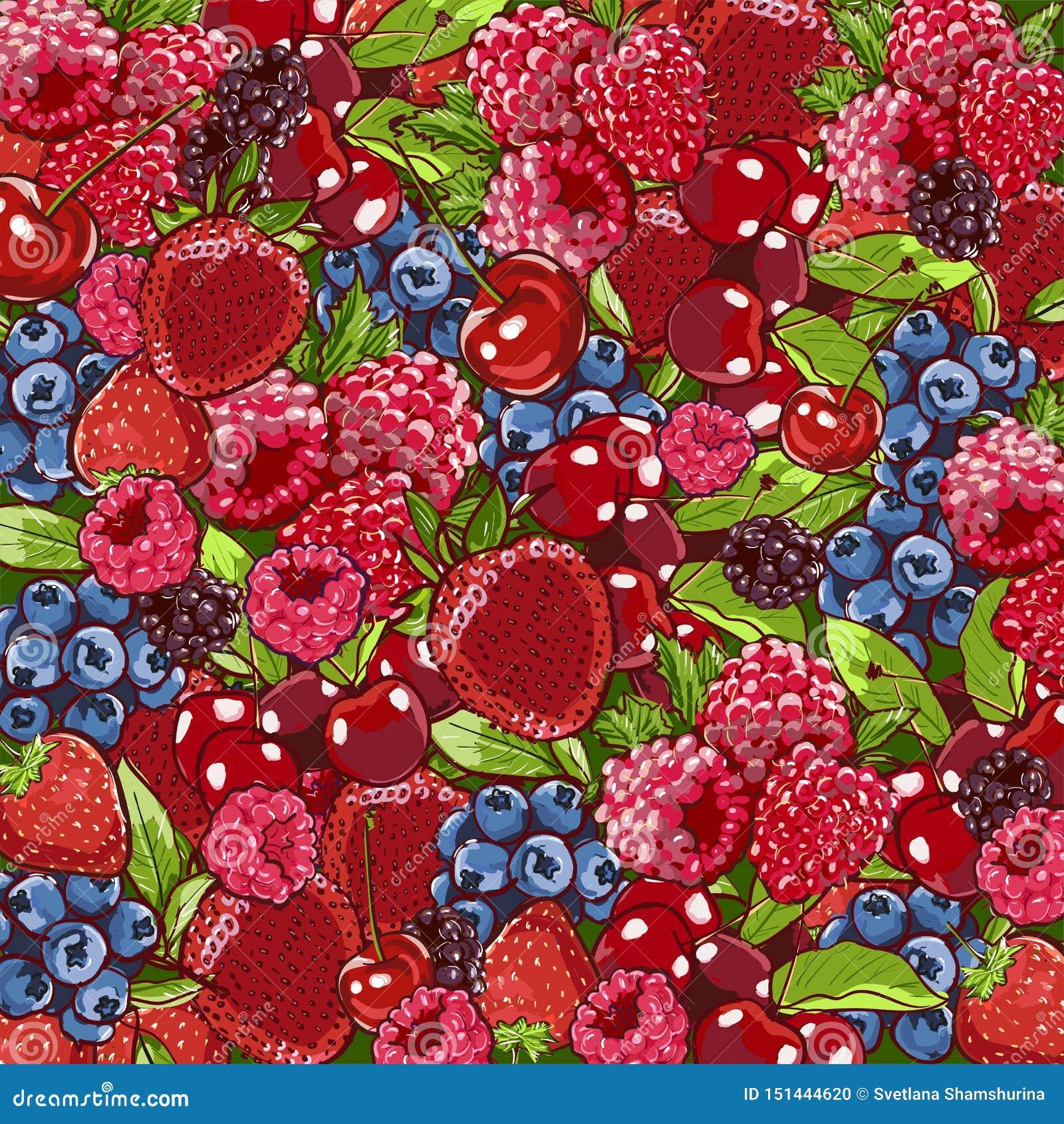 Fond de baie De baies mélange assorti coloré de plan rapproché au-dessus de la fraise, myrtille, framboise, mûre Fond de nourritu