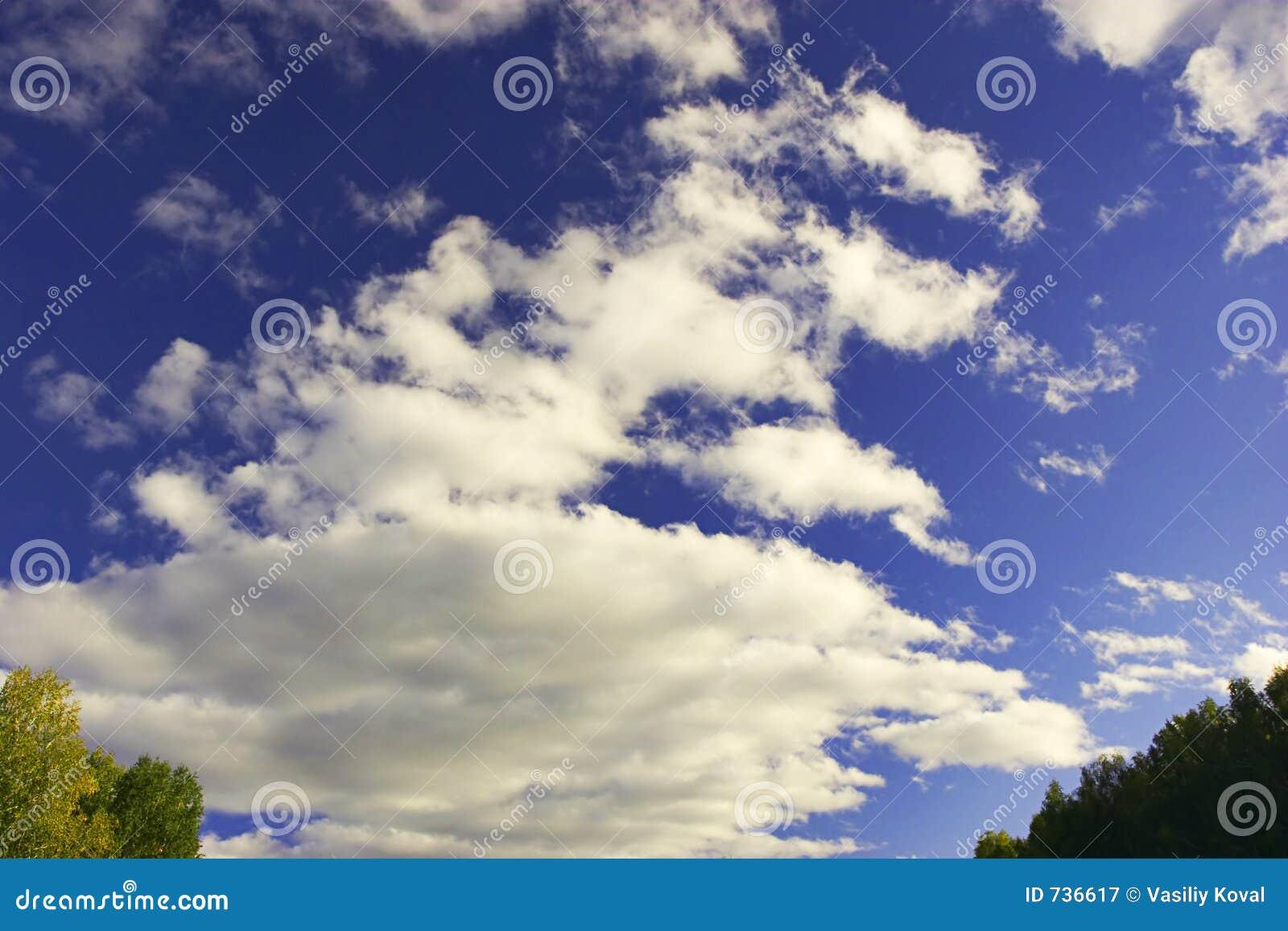 Fond de ciel