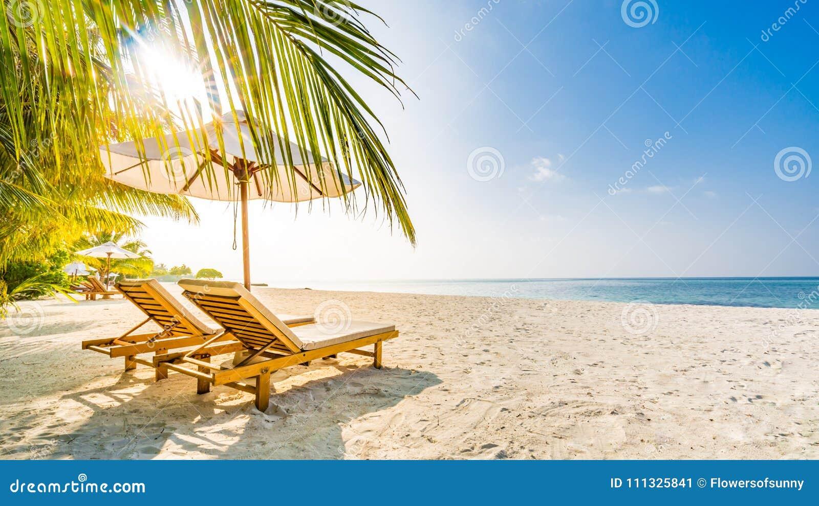 Fond de destination de voyage d été Scène de plage d été, parapluie de soleil de lits du soleil et palmiers