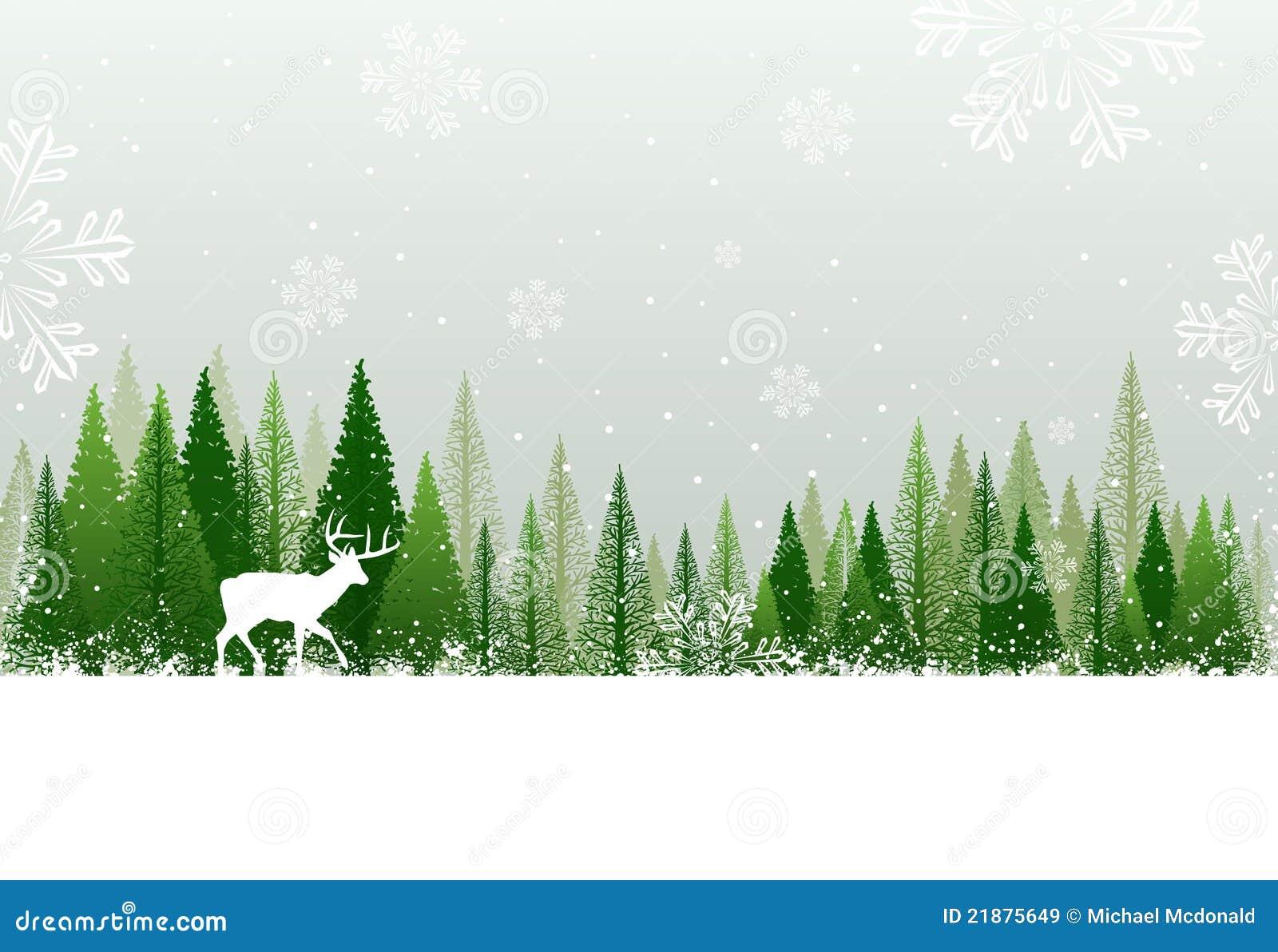 Fond de forêt de l hiver de Milou
