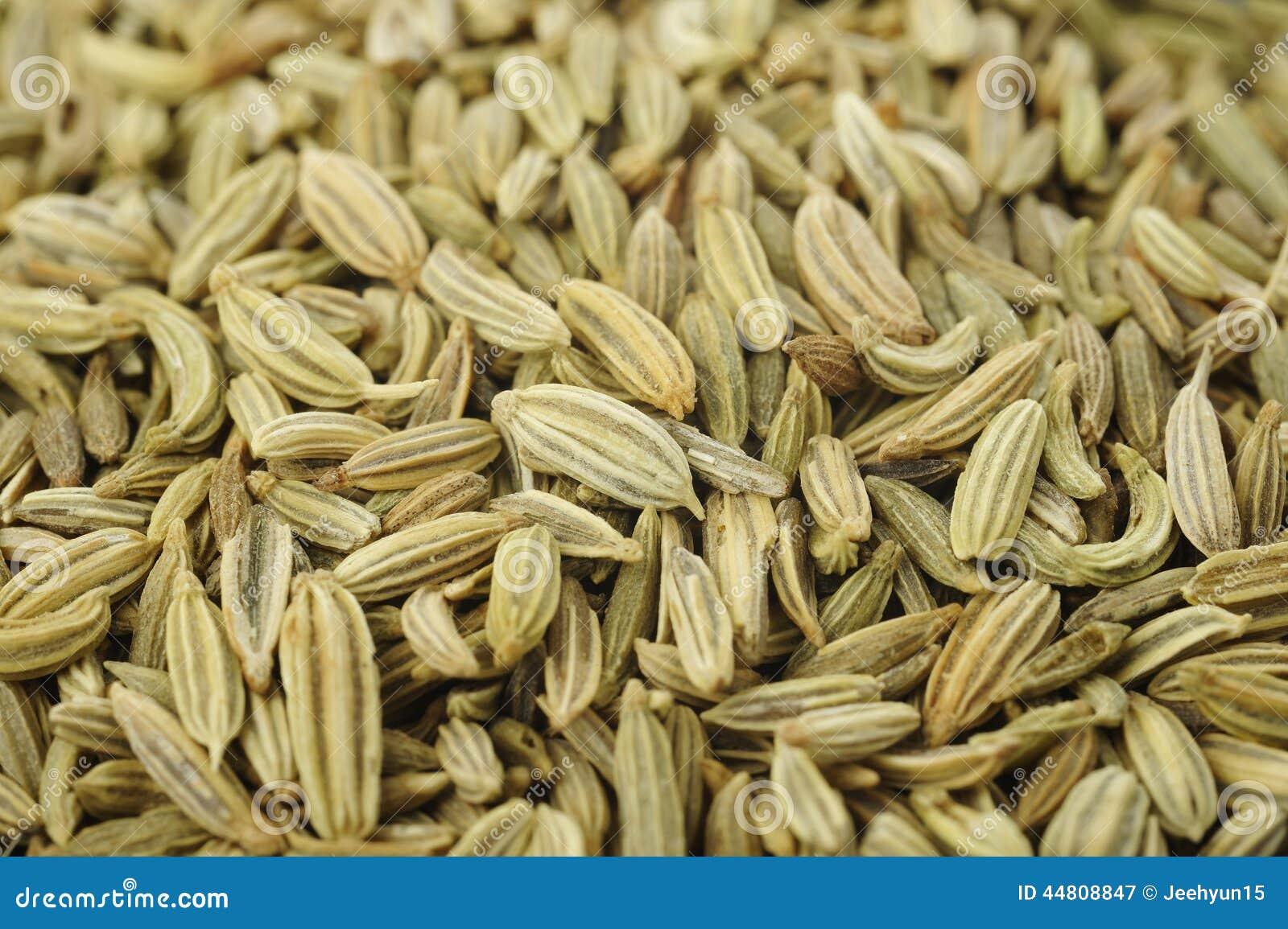 Fond de graine de fenouil image stock. Image du graine..