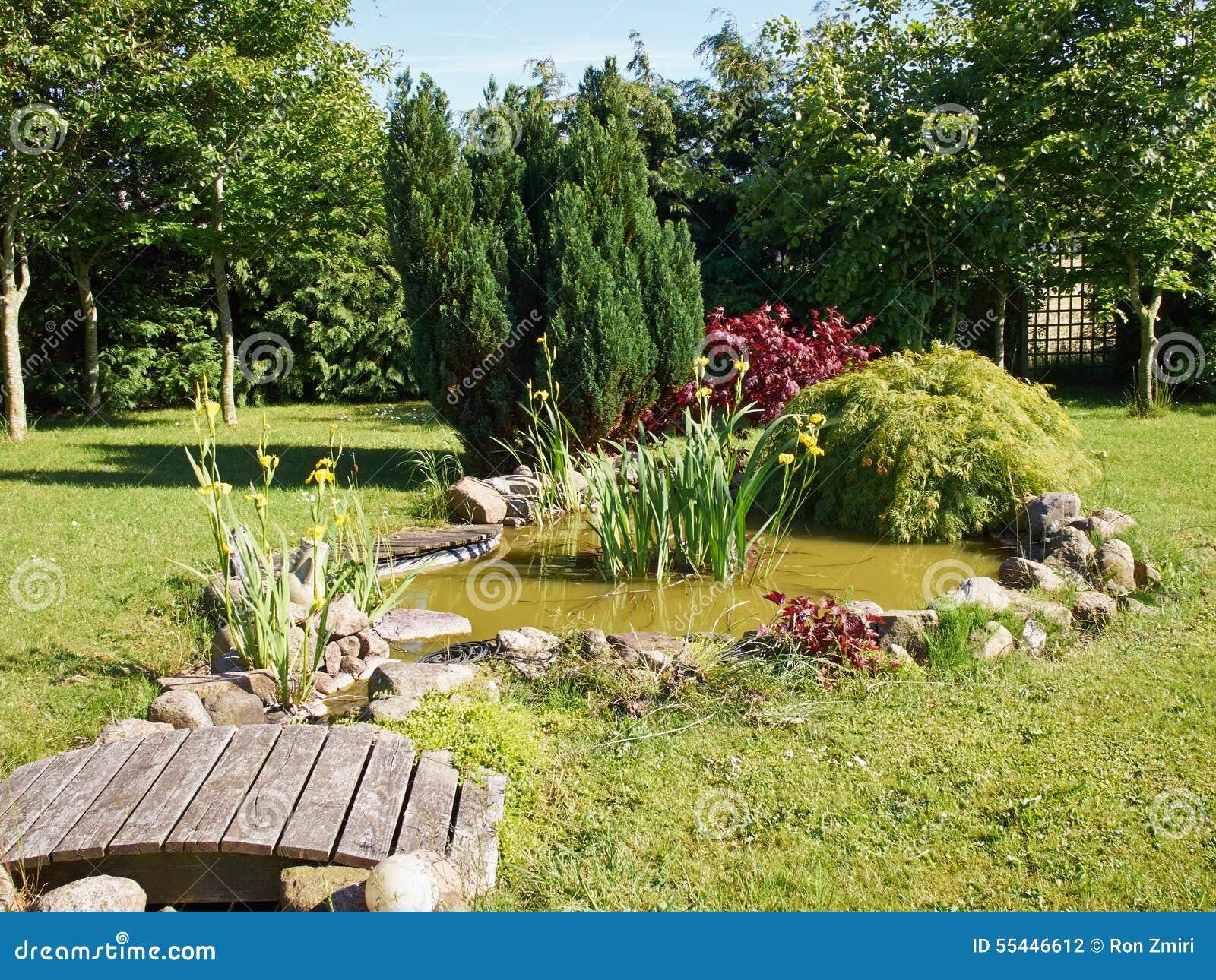 Fond De Jardinage De Bel Tang Poissons Classique De