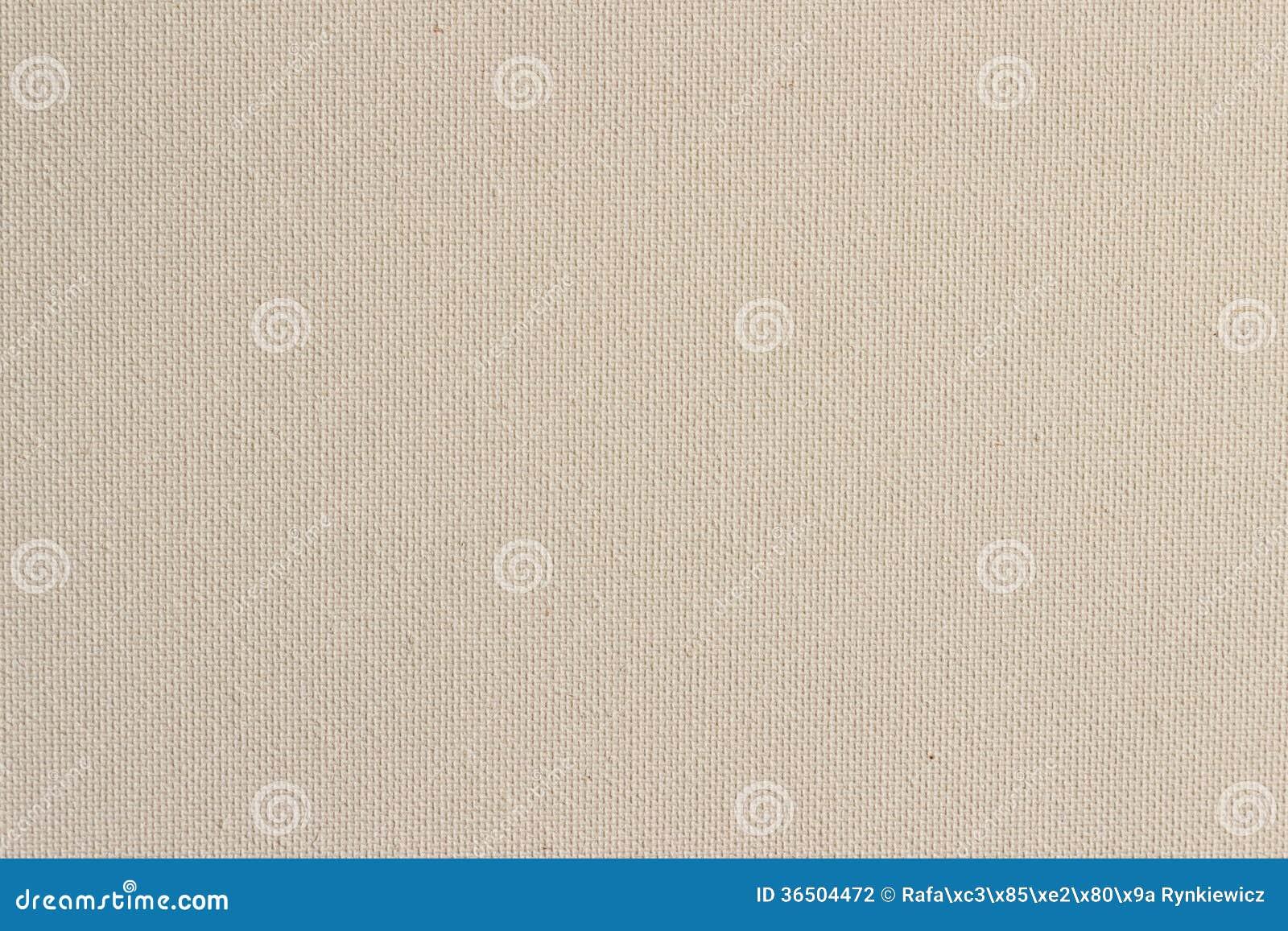 Fond de la texture brute blanche de toile