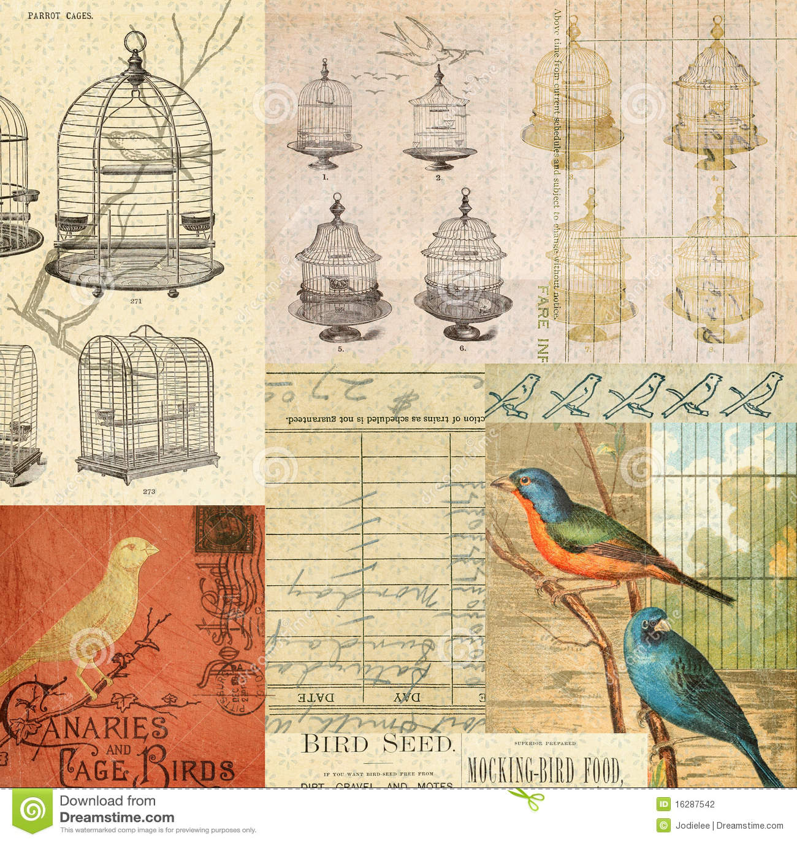 Fond de montage de collage d oiseaux et de cages de cru