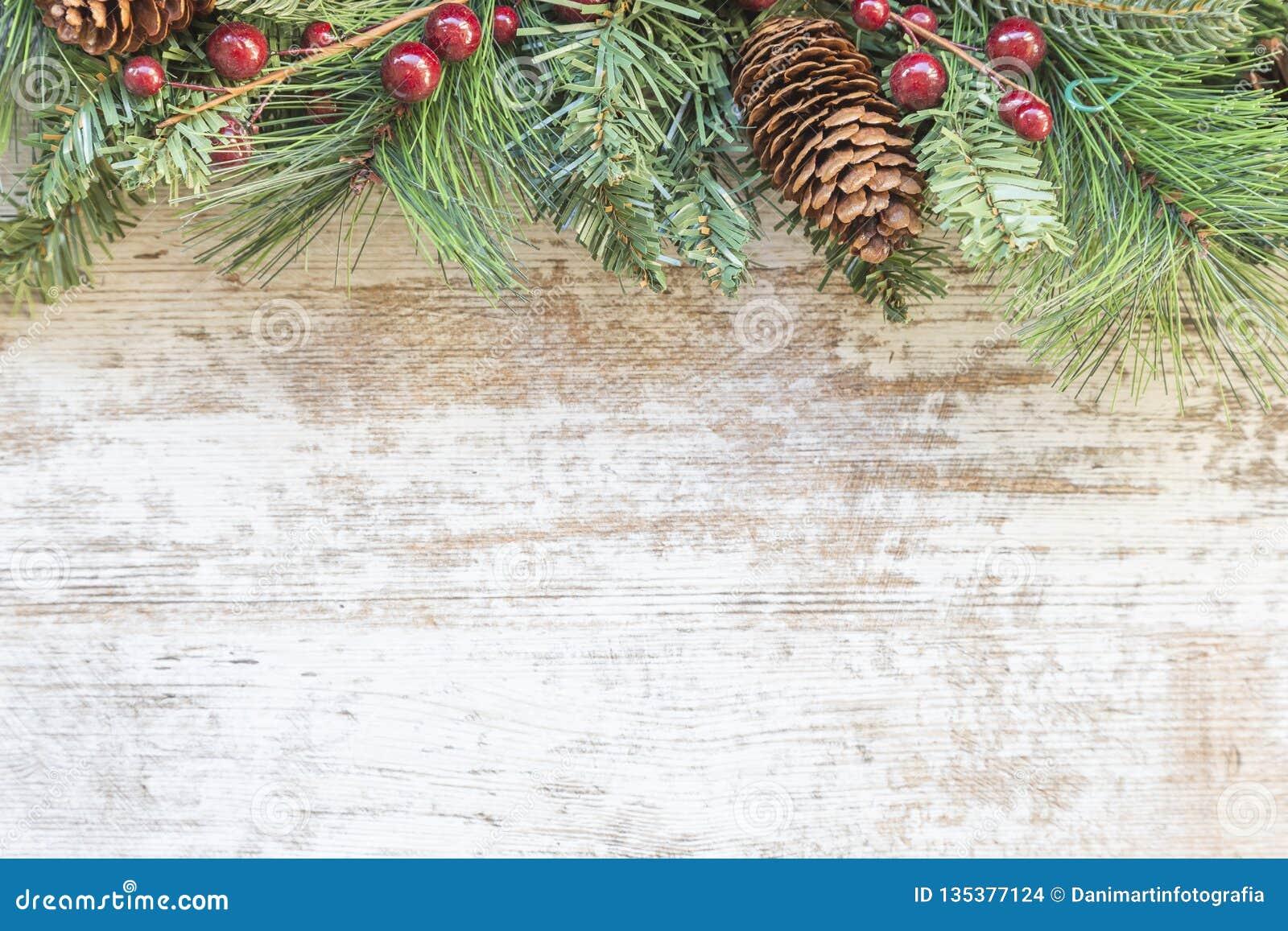 Arbre Bois Blanc Decoration fond de noël avec l'arbre de sapin, la baie rouge et la