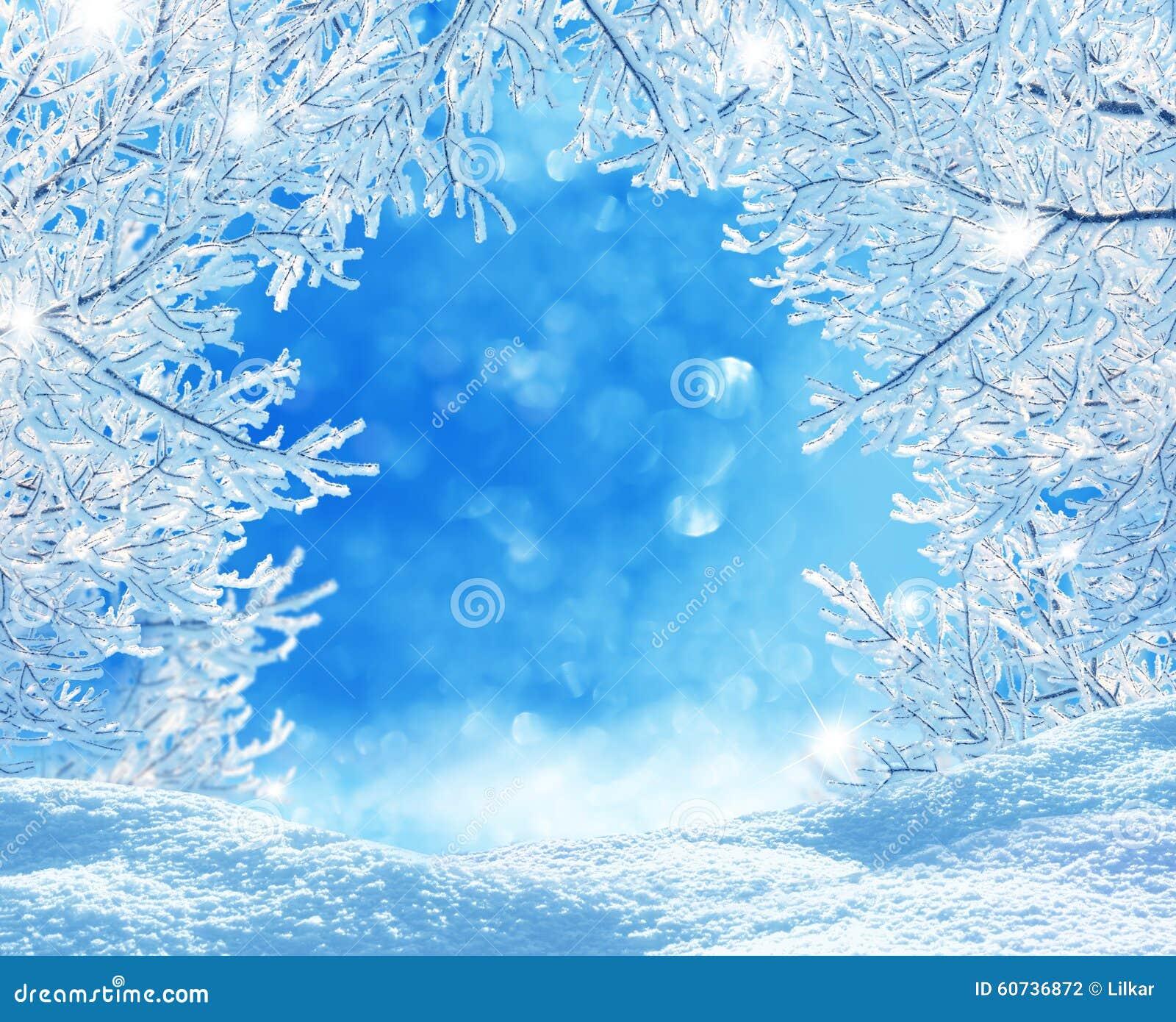 Fond de Noël de l hiver