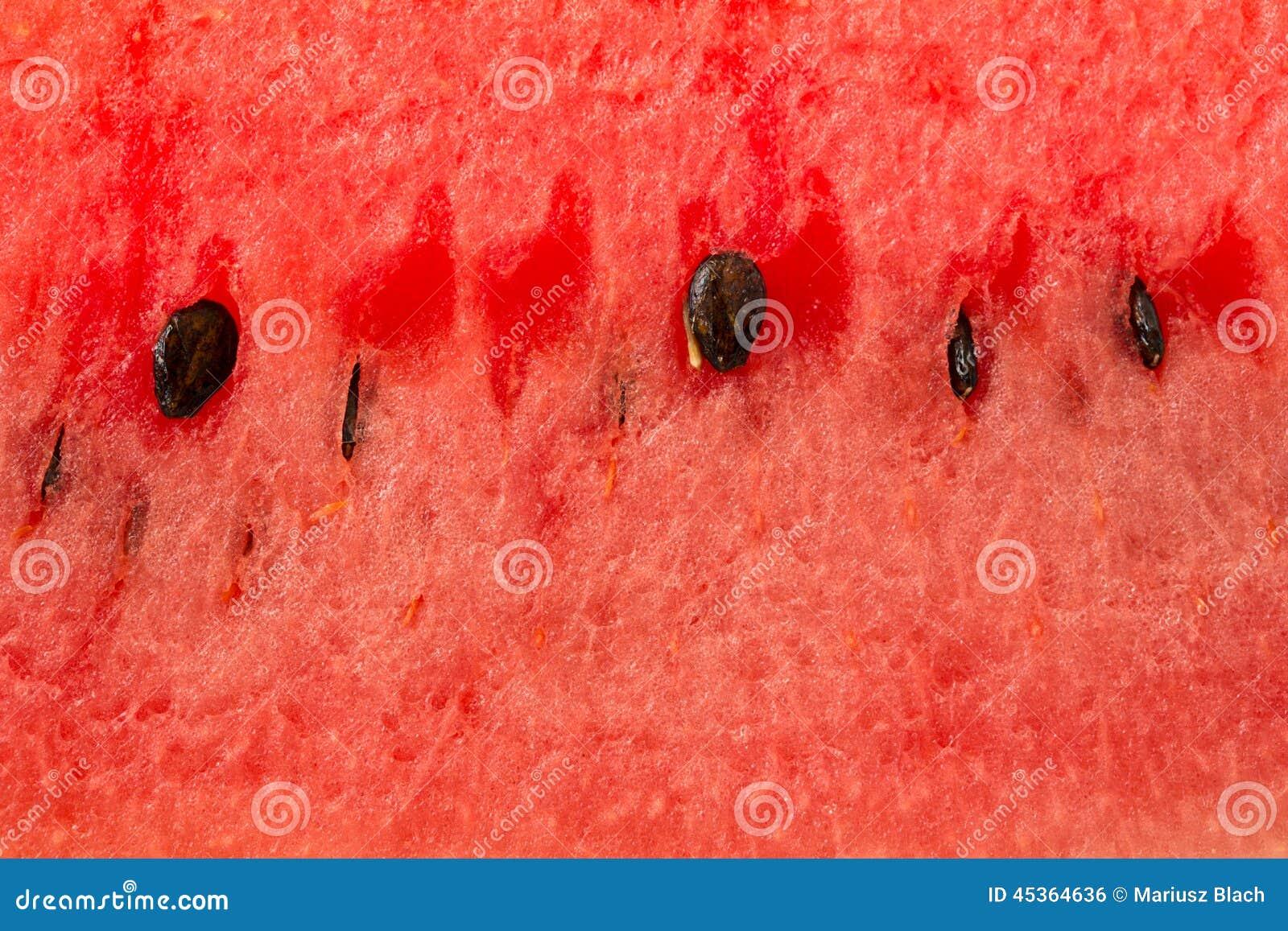 Fond de pastèque