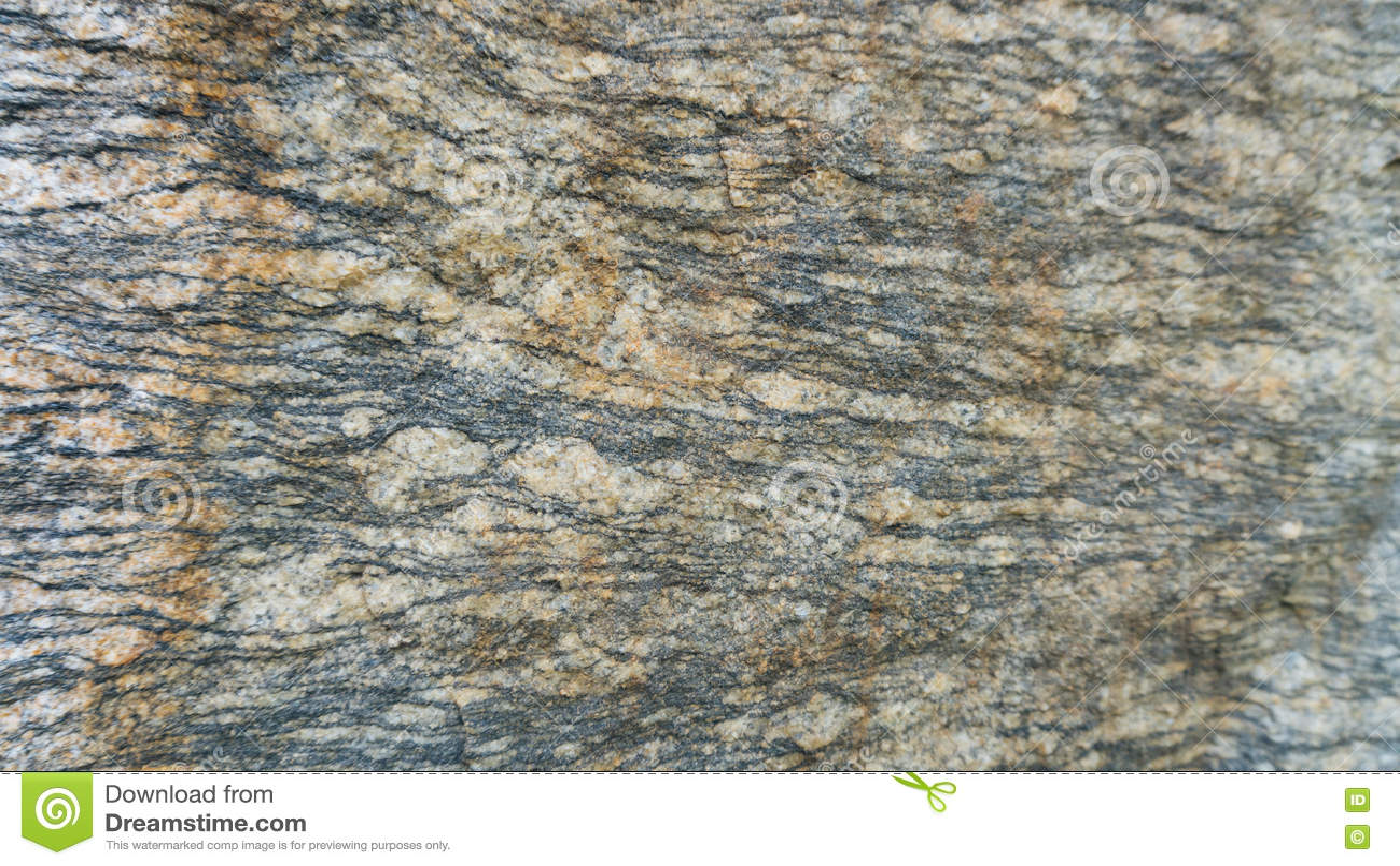 Fond de pierre de texture posé par gneiss