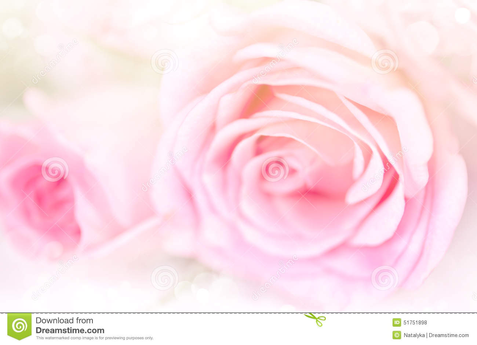 fond de roses de fleur avec la couleur rose douce photo stock image 51751898. Black Bedroom Furniture Sets. Home Design Ideas
