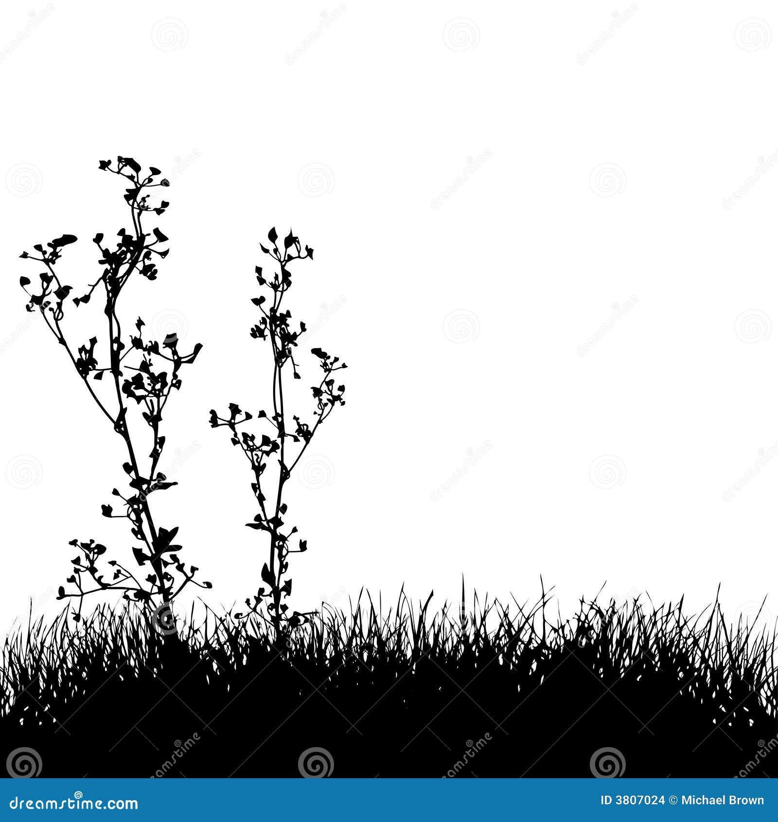 Fond de silhouette d herbe et de centrales