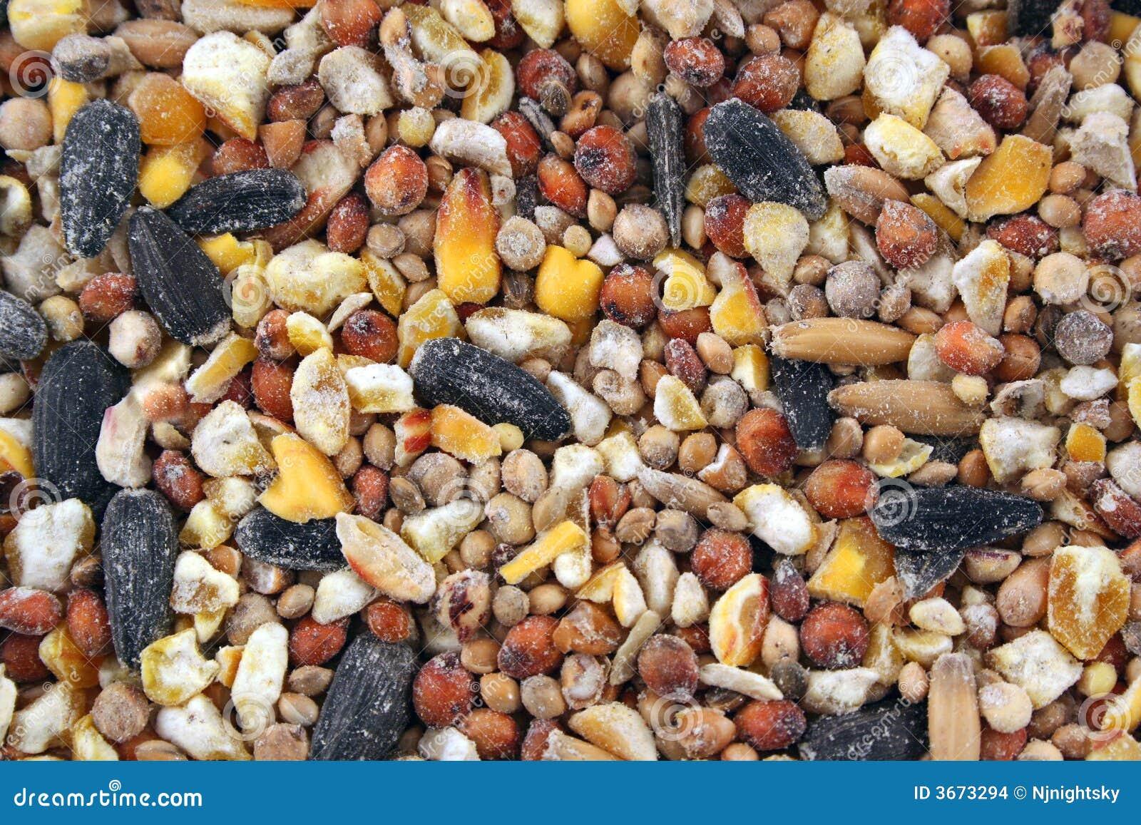 Fond de texture de graine d 39 oiseau images stock image - Graine de piment oiseau ...