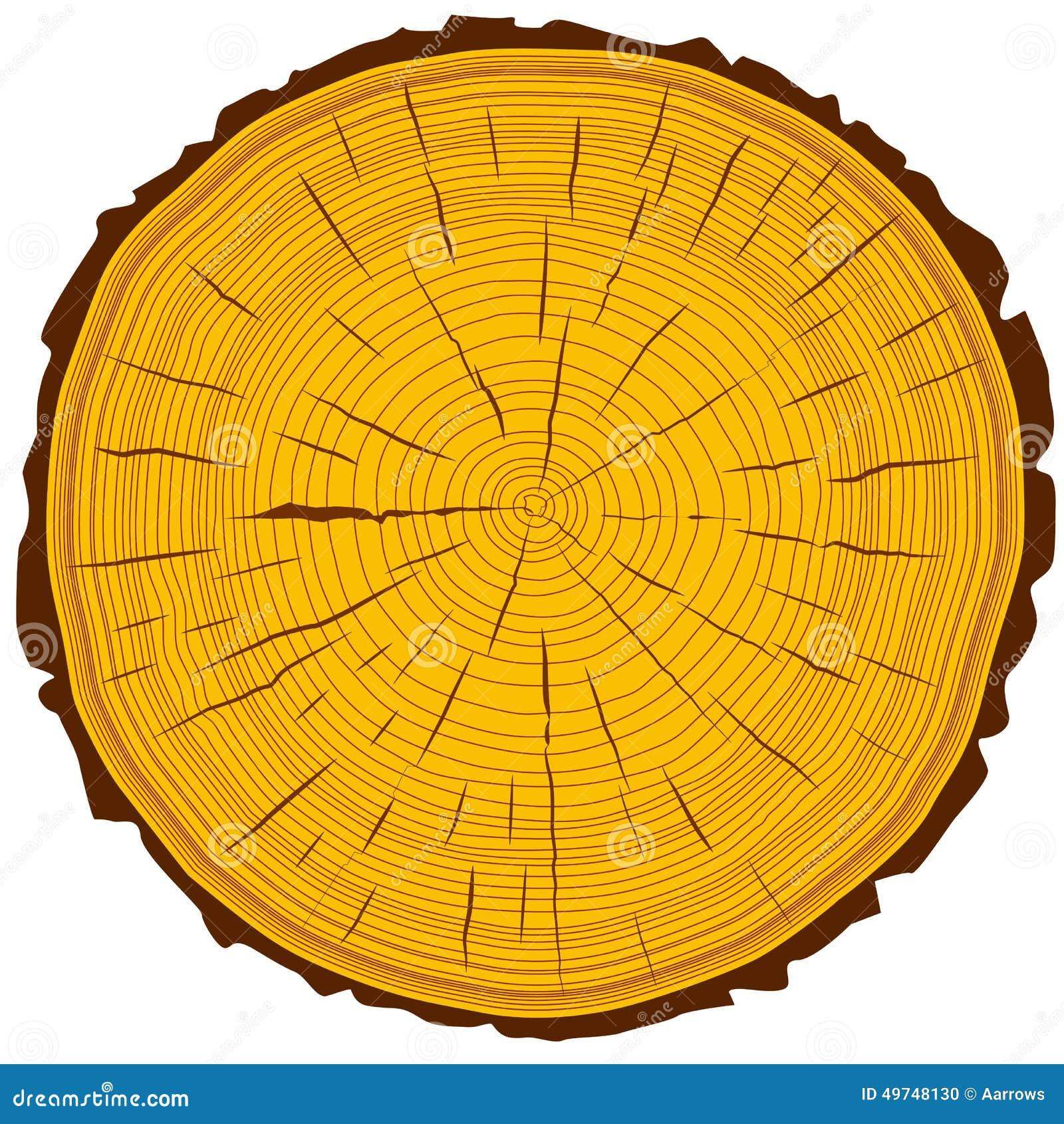fond de tronc d 39 arbre de coupe de scie d 39 anneaux d 39 arbre illustration de vecteur image 49748130. Black Bedroom Furniture Sets. Home Design Ideas