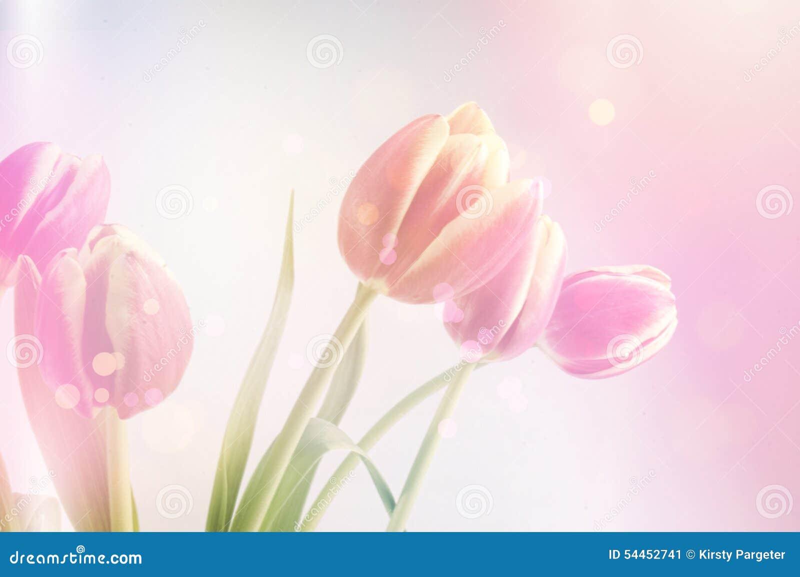 Fond de tulipes de vintage