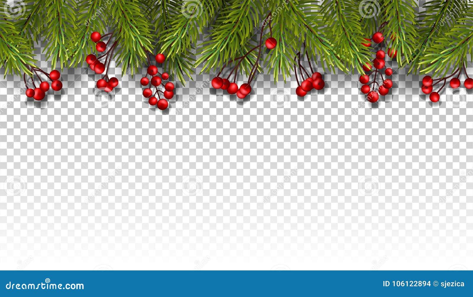 Fond de vacances avec des branches de sapin et des baies rouges