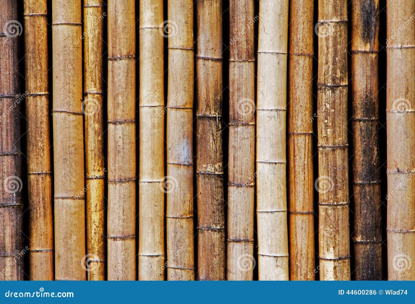 fond de vieille et s che barri re en bambou photo stock image 44600286. Black Bedroom Furniture Sets. Home Design Ideas