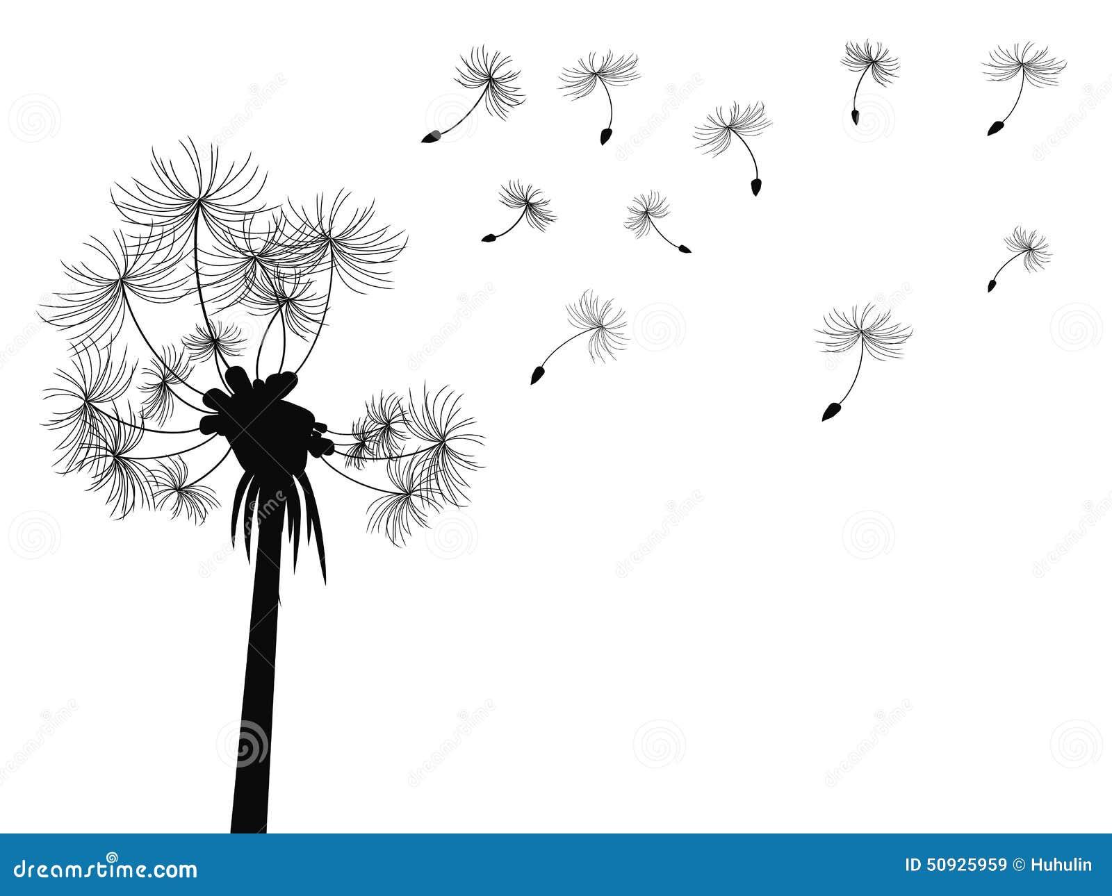 Fond de vol de pissenlit illustration de vecteur - Dessin fleur pissenlit ...