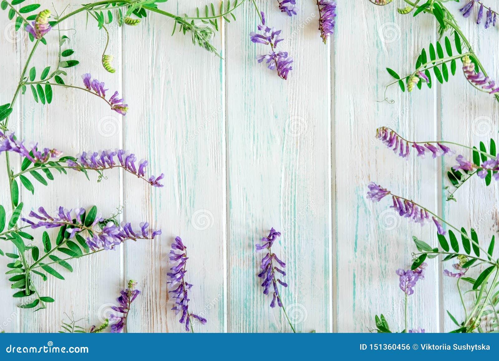 Fond des wildflowers Fond pour une banni?re avec des couleurs naturelles Banni?re avec des fleurs de Copyspeis Fond floral Fleurs