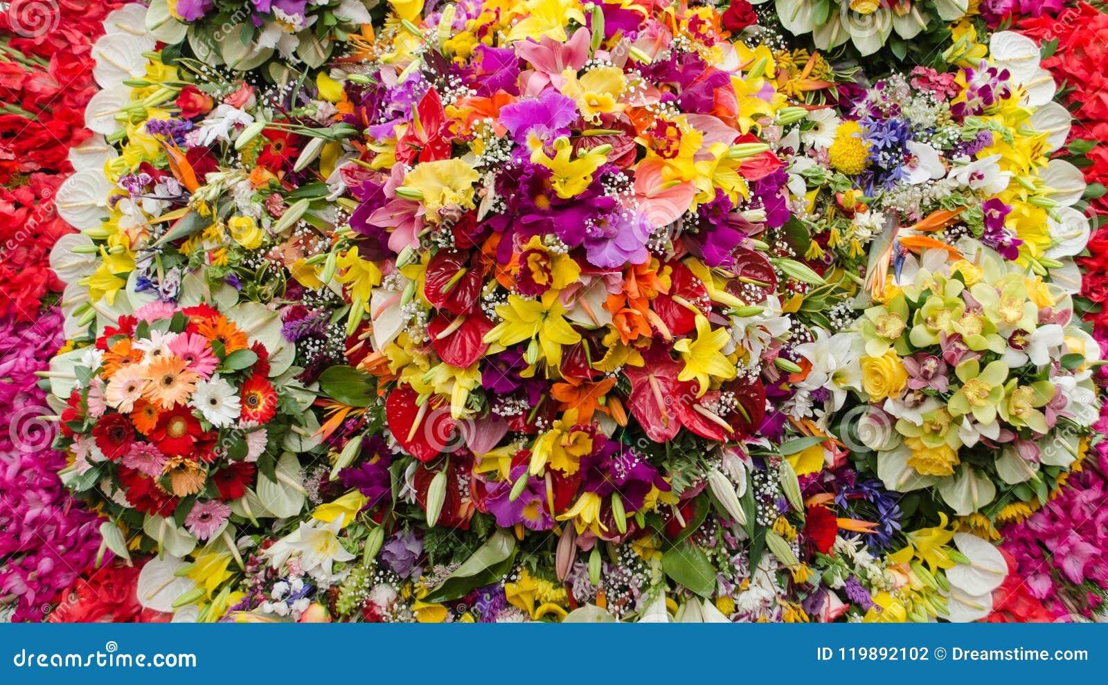 Fond du groupe de fleurs multicolore