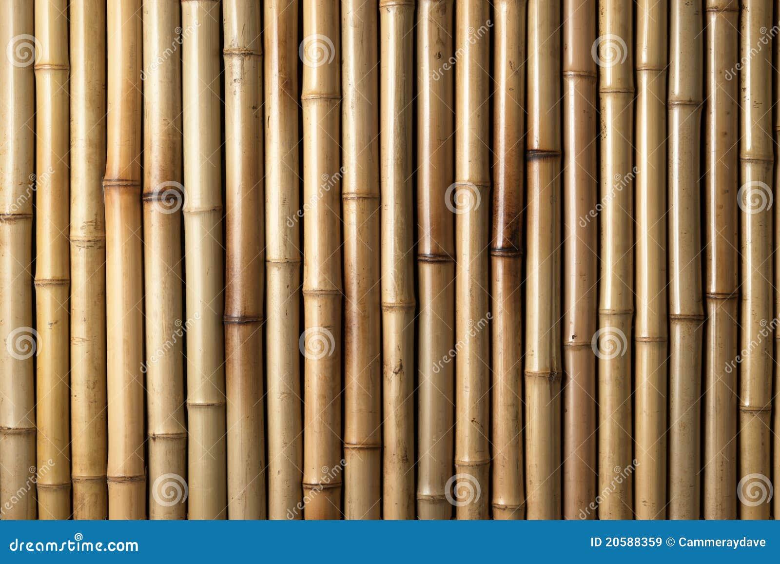 Fond en bambou en bois