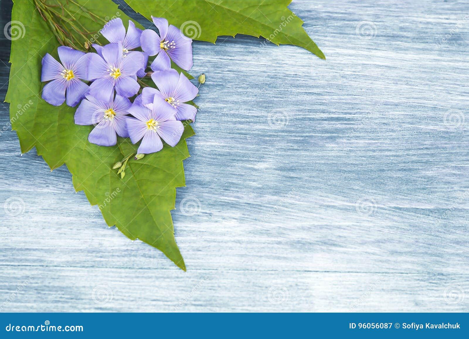 Fond en bois avec les fleurs bleues