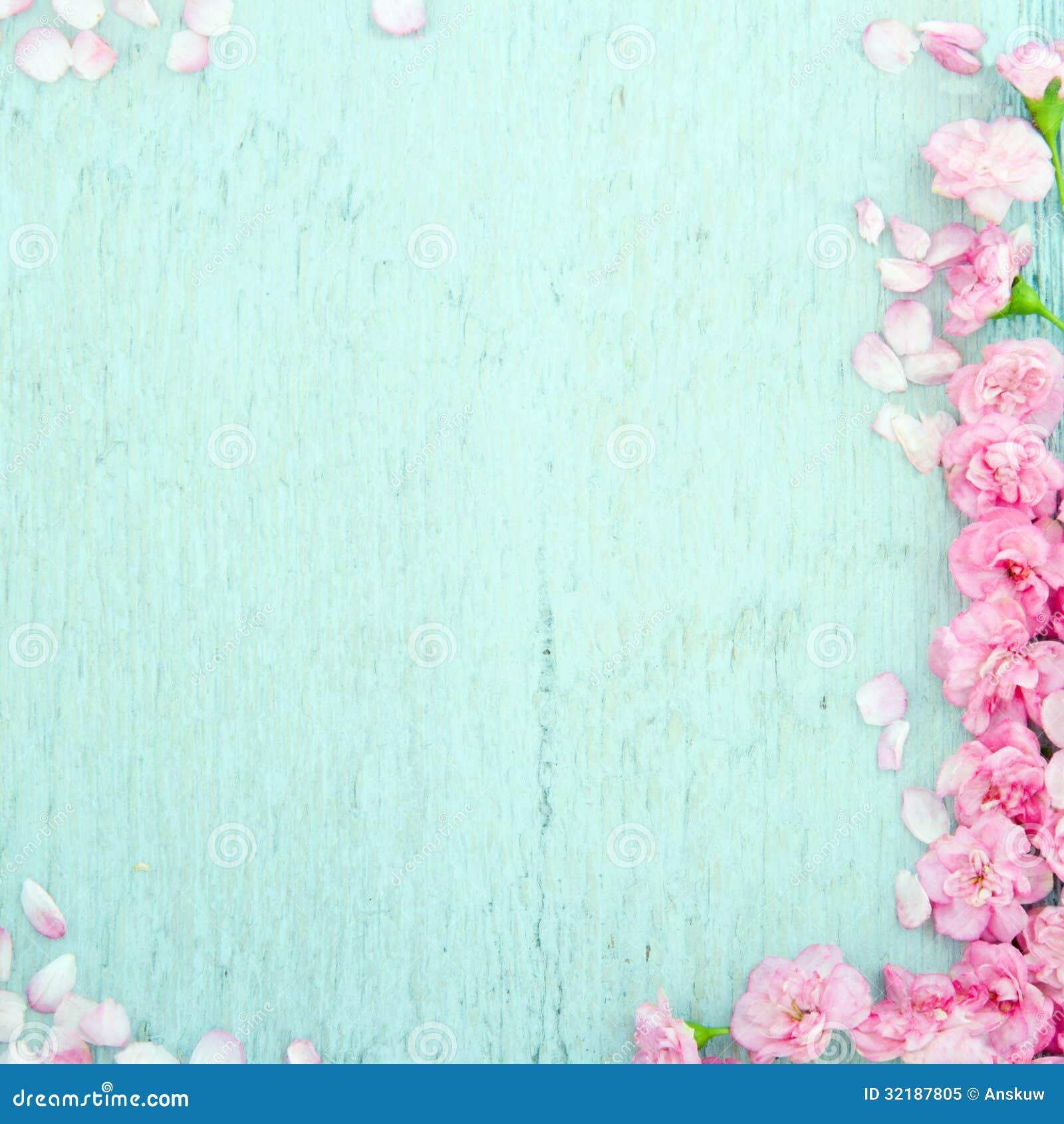 Fond en bois bleu avec les fleurs roses