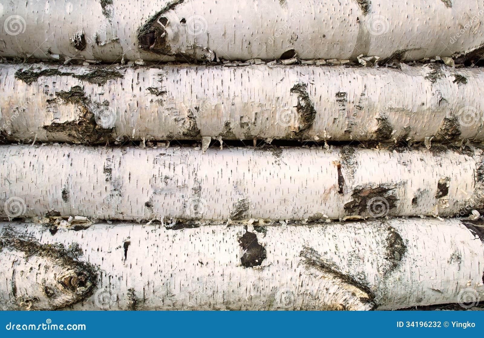 Fond en bois de bouleau photo stock Image du traditionnel 34196232 # Bois De Bouleau Utilisation