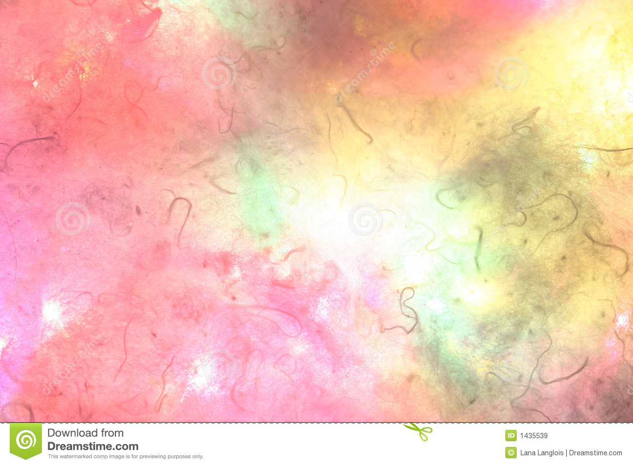 Paint Color Cosmos