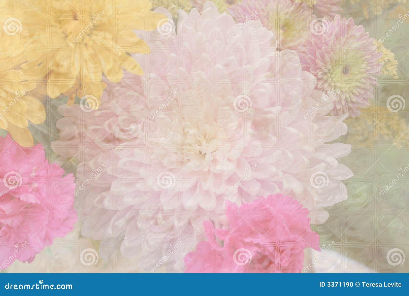 Fond en pastel de fleur