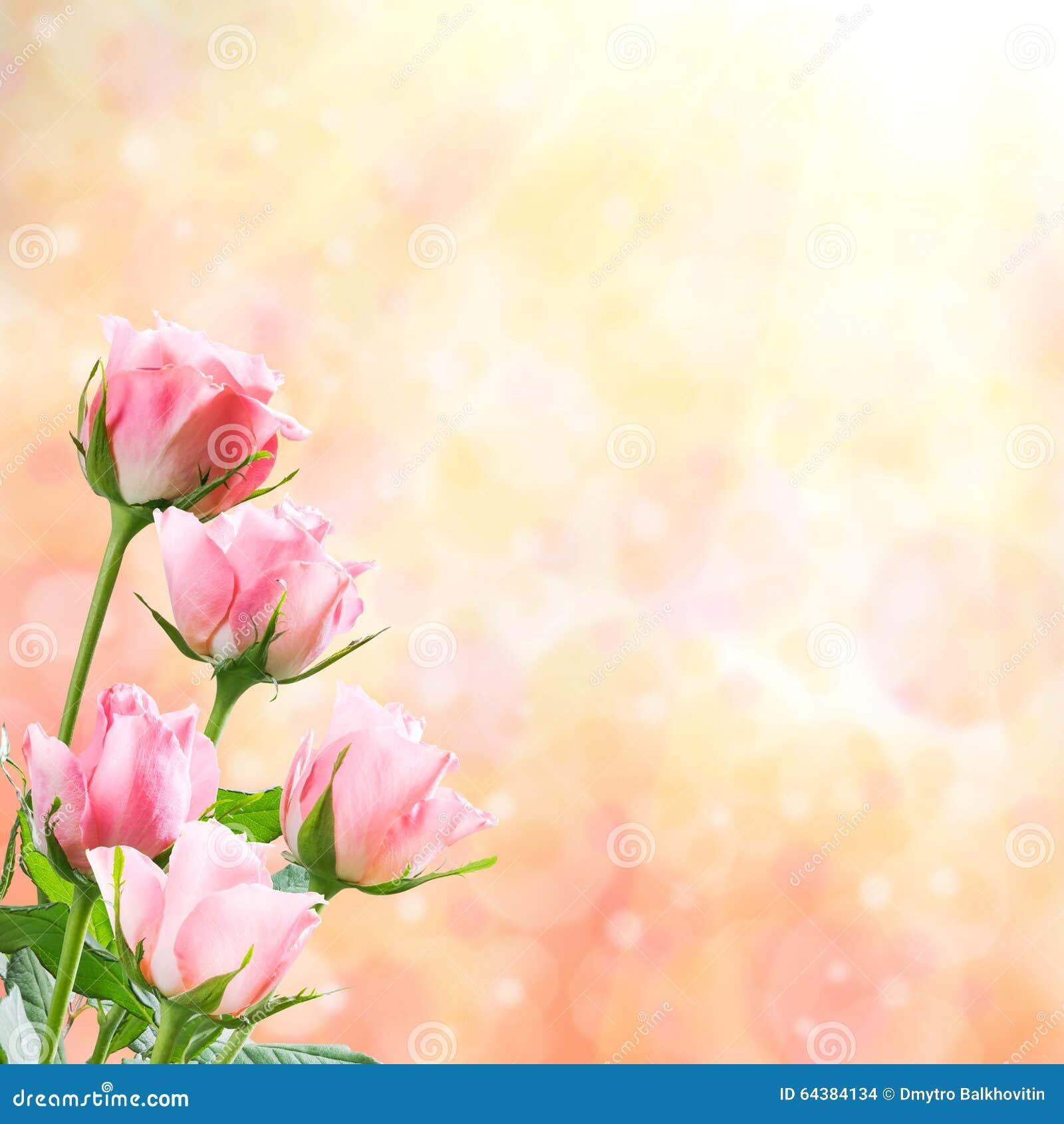 Fond floral de nature de vacances