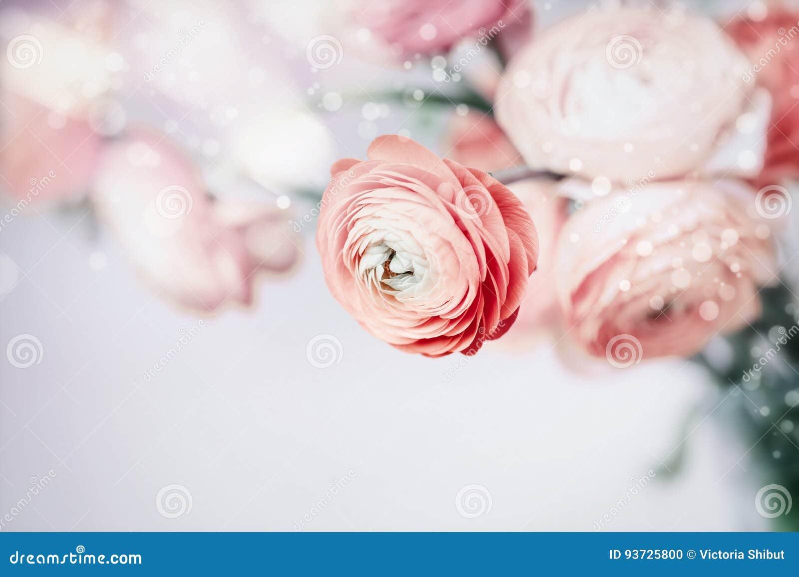 Fond Floral En Pastel Avec De Jolies Fleurs Photo stock