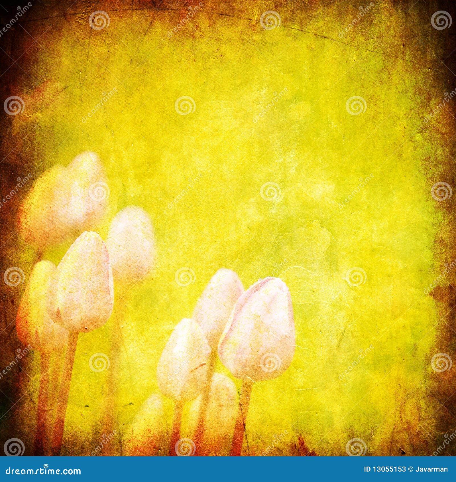 Fond floral grunge avec l espace pour le texte