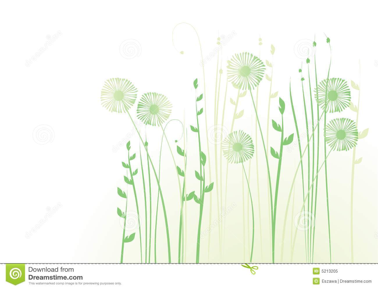 Fond floral, pré, jardin